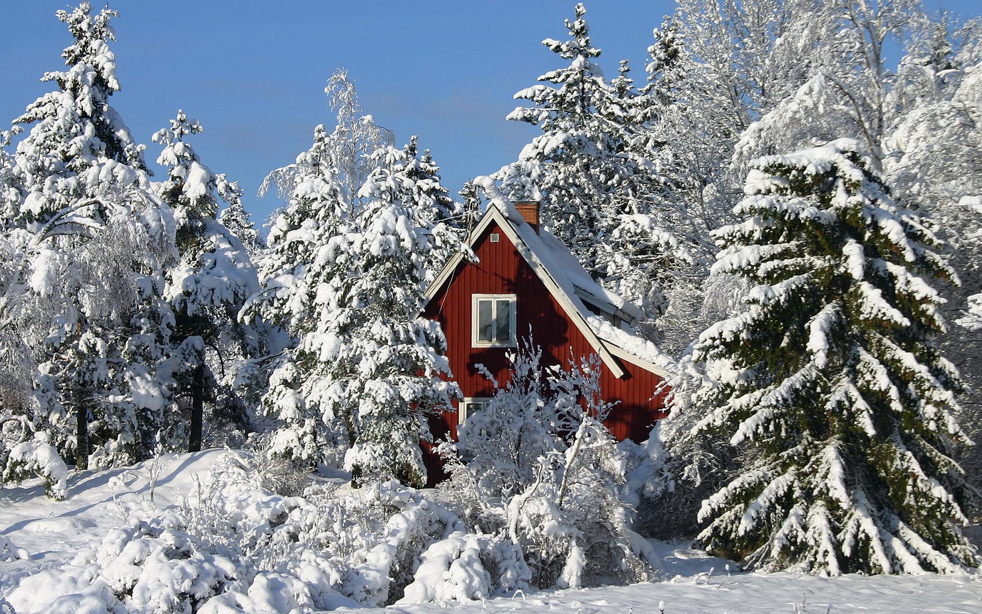 Картинки зимний домик в лесу