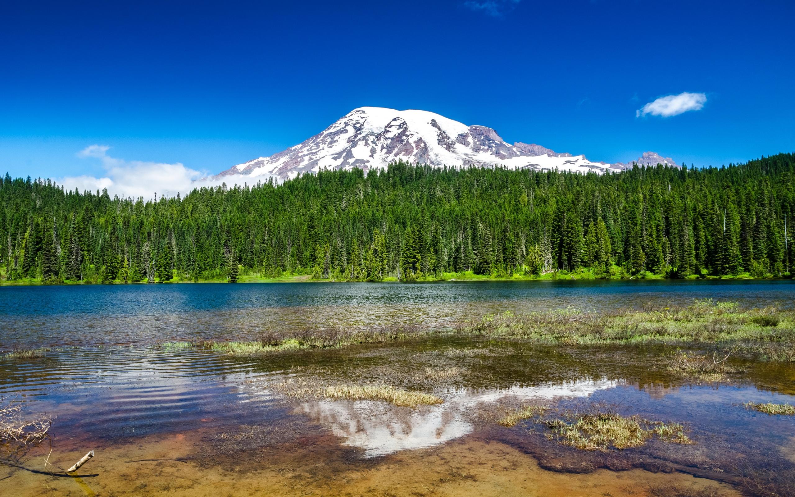 Озеро, гора, зеленый лес  № 621640 загрузить