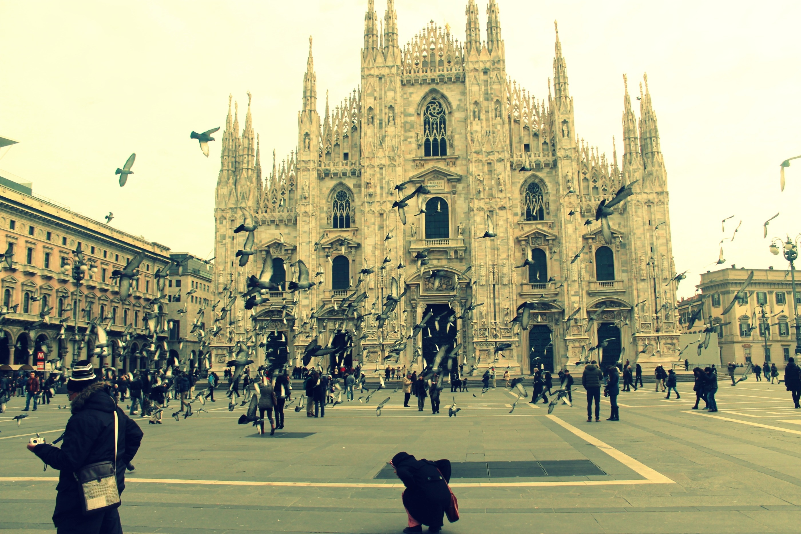 Милан картинки на рабочий стол, выздоравливай