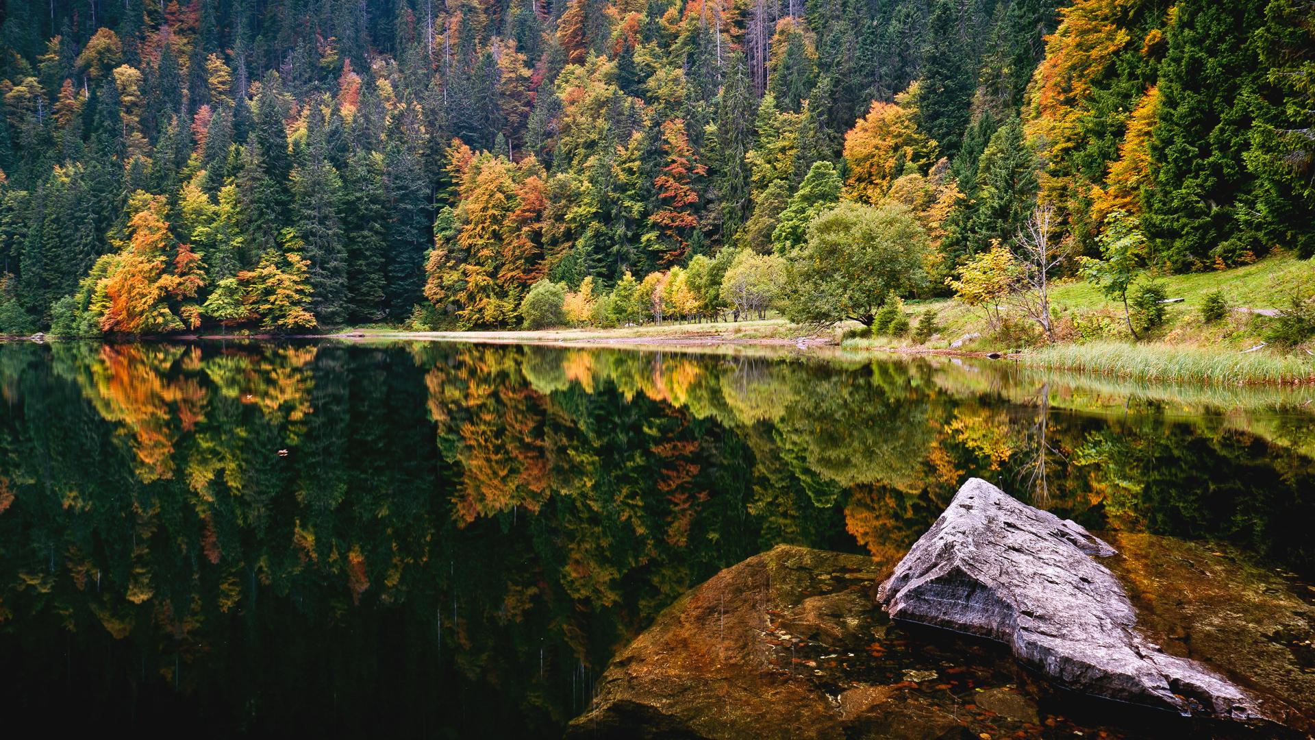 вода озеро осень water the lake autumn  № 1155984 без смс