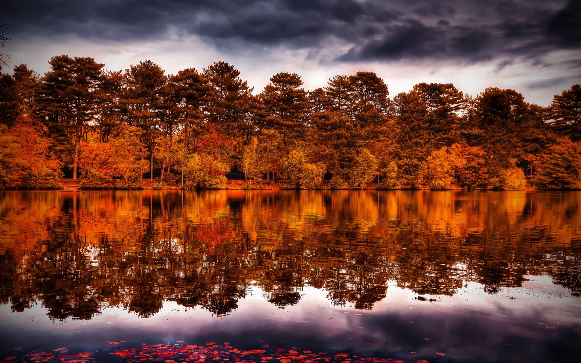 природа деревья река отражение осень nature trees river reflection autumn загрузить