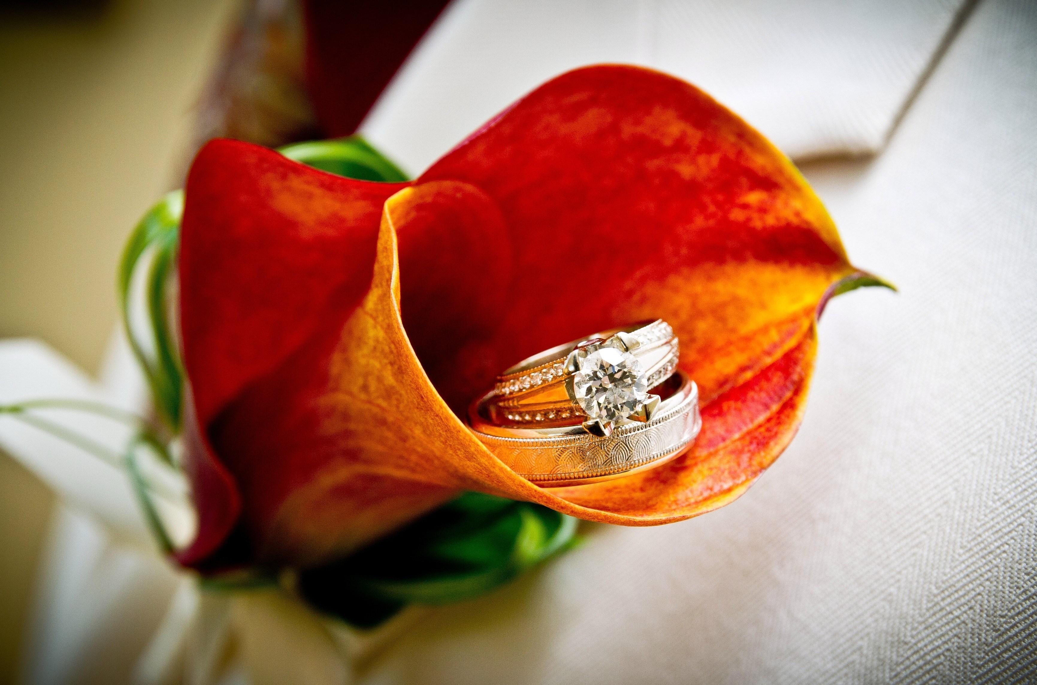 обручальные изысканные кольца  № 631707 без смс