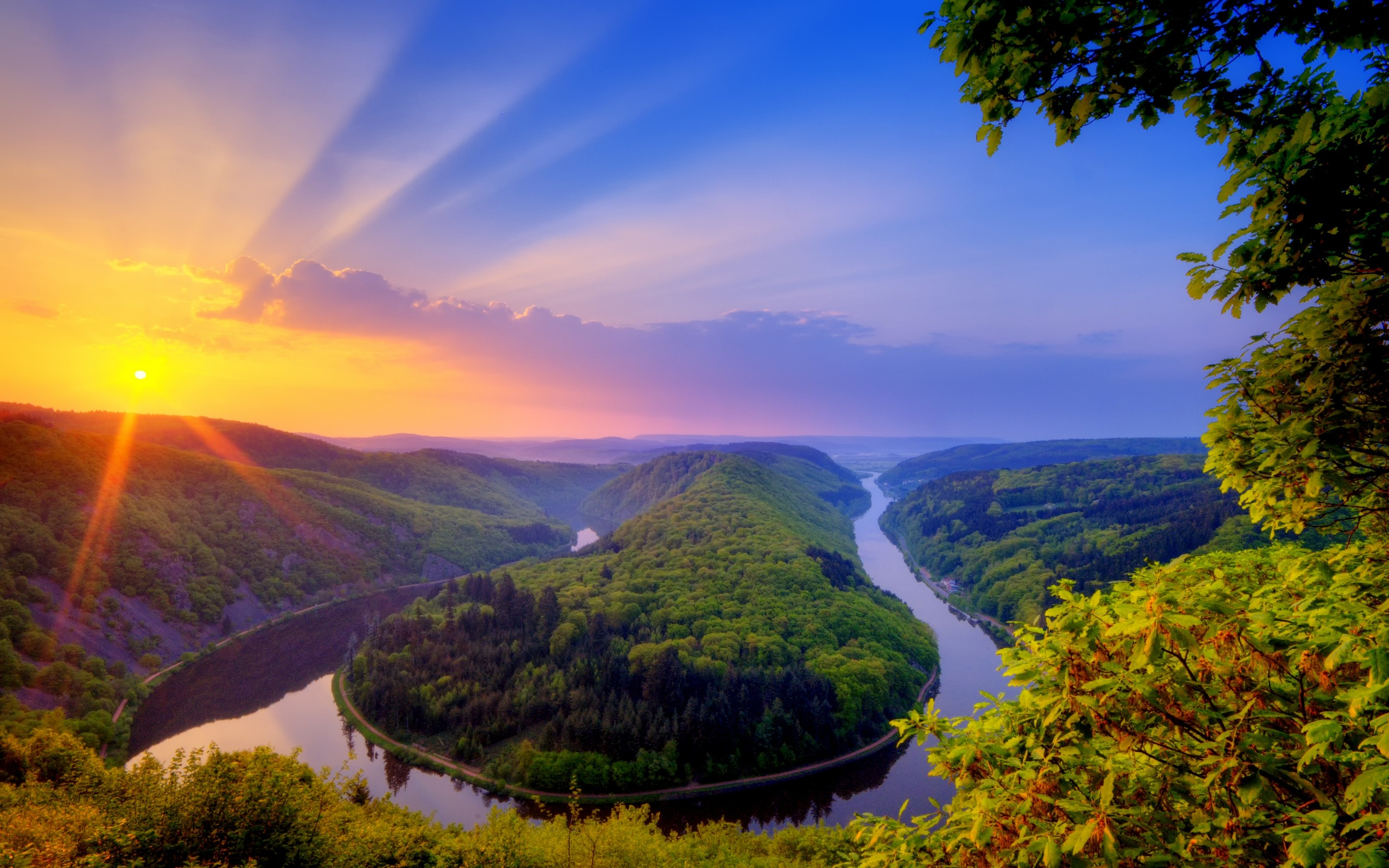 природа река солнце деревья  № 198716  скачать