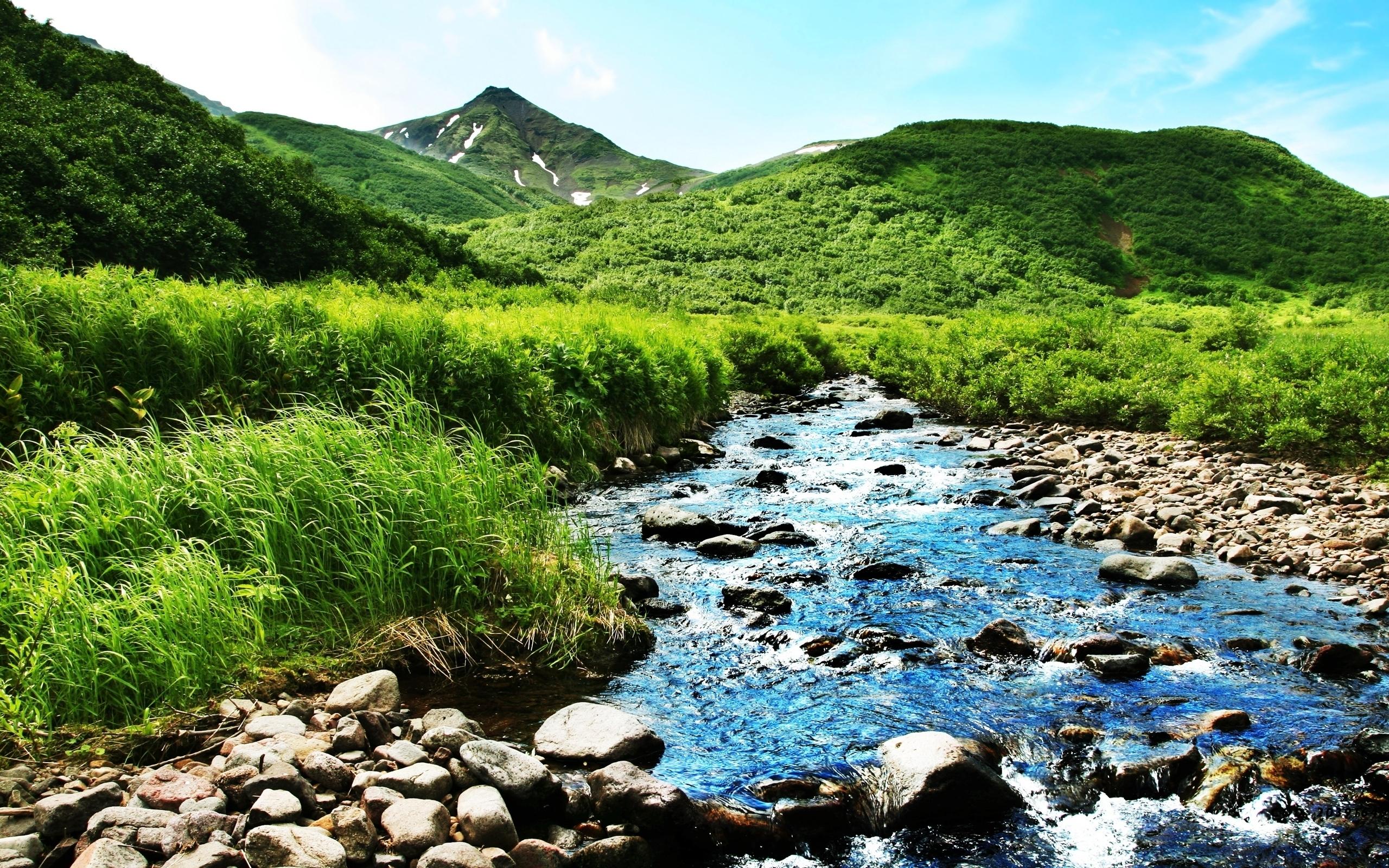 горы скалы русло трава без смс
