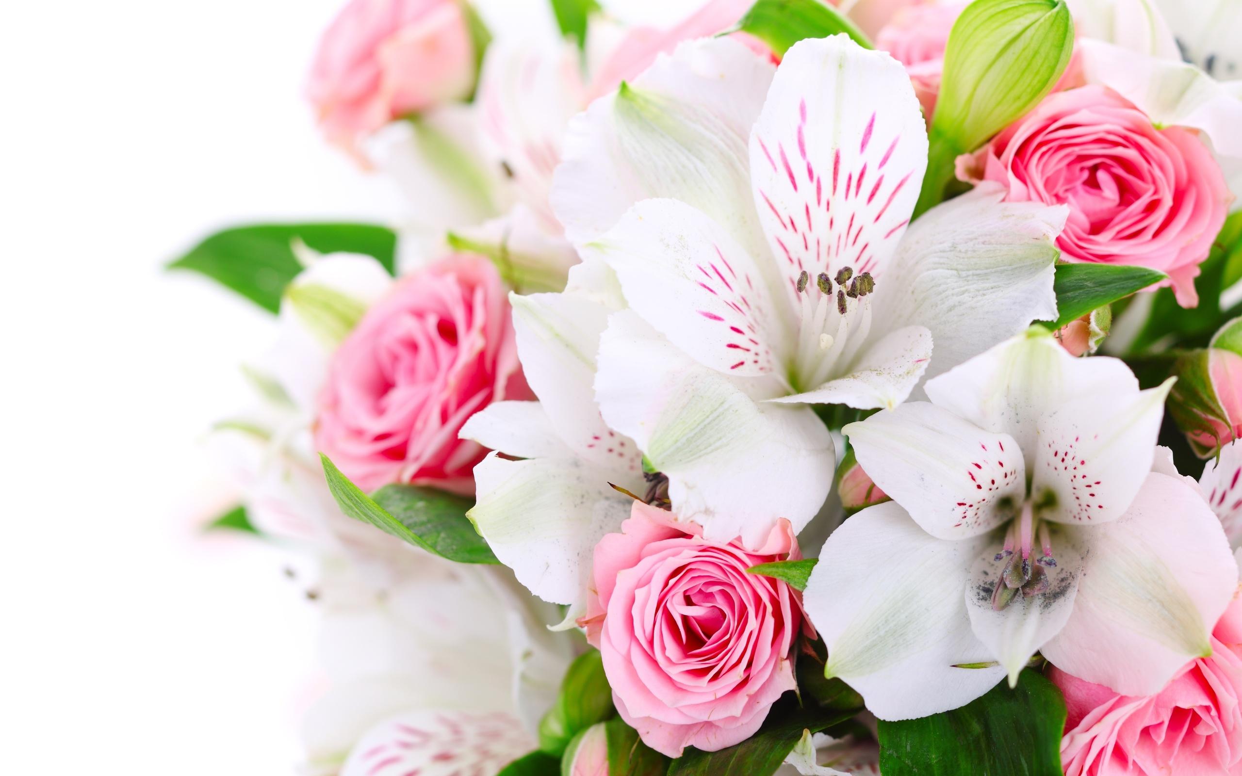 Картинки красивых цветов и букетов