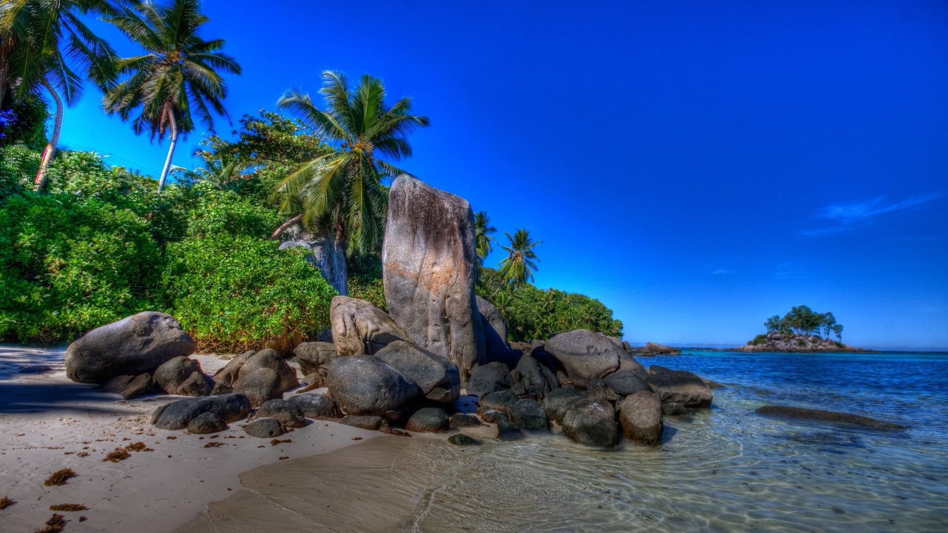 природа море остров деревья без смс