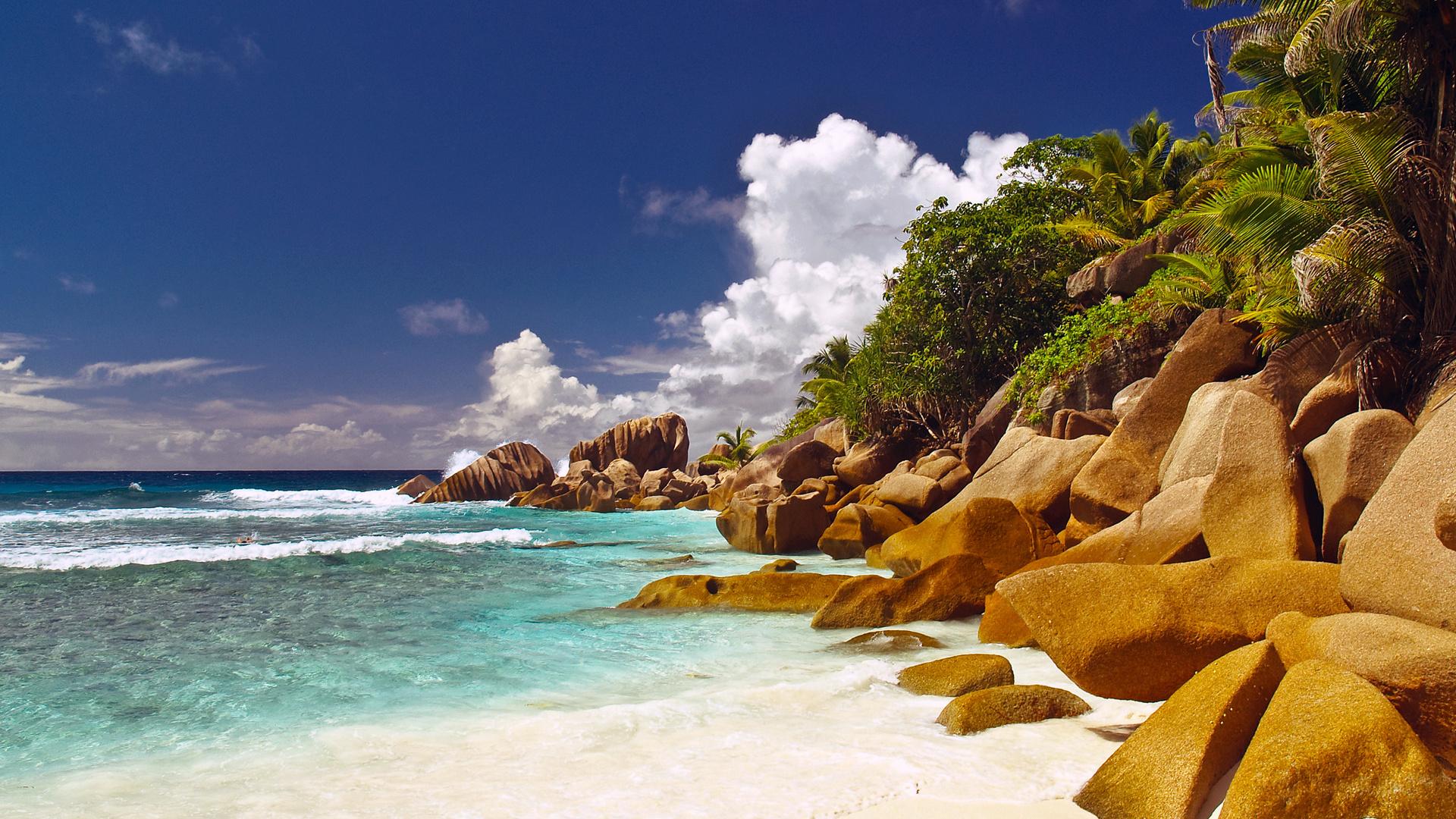 природа море остров деревья скачать