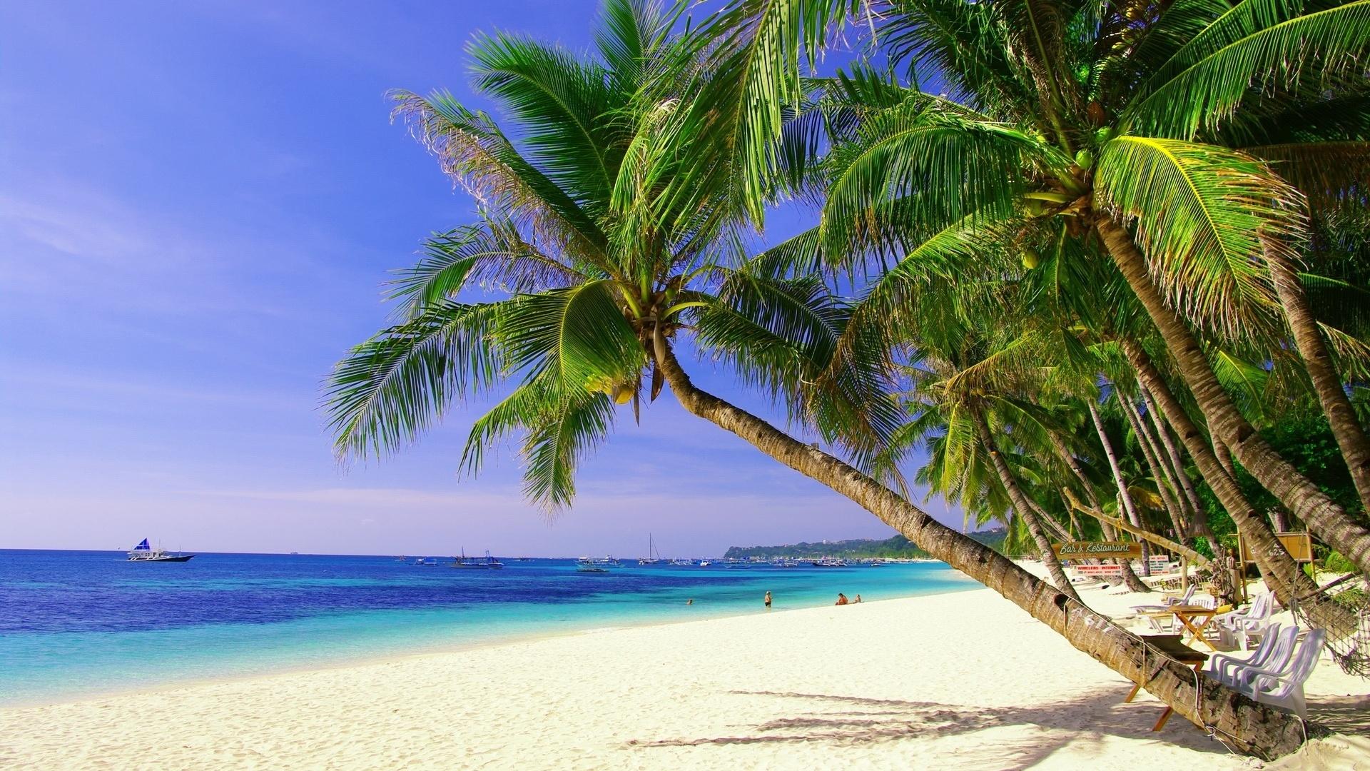 Пальмы, гора, отдых подборки