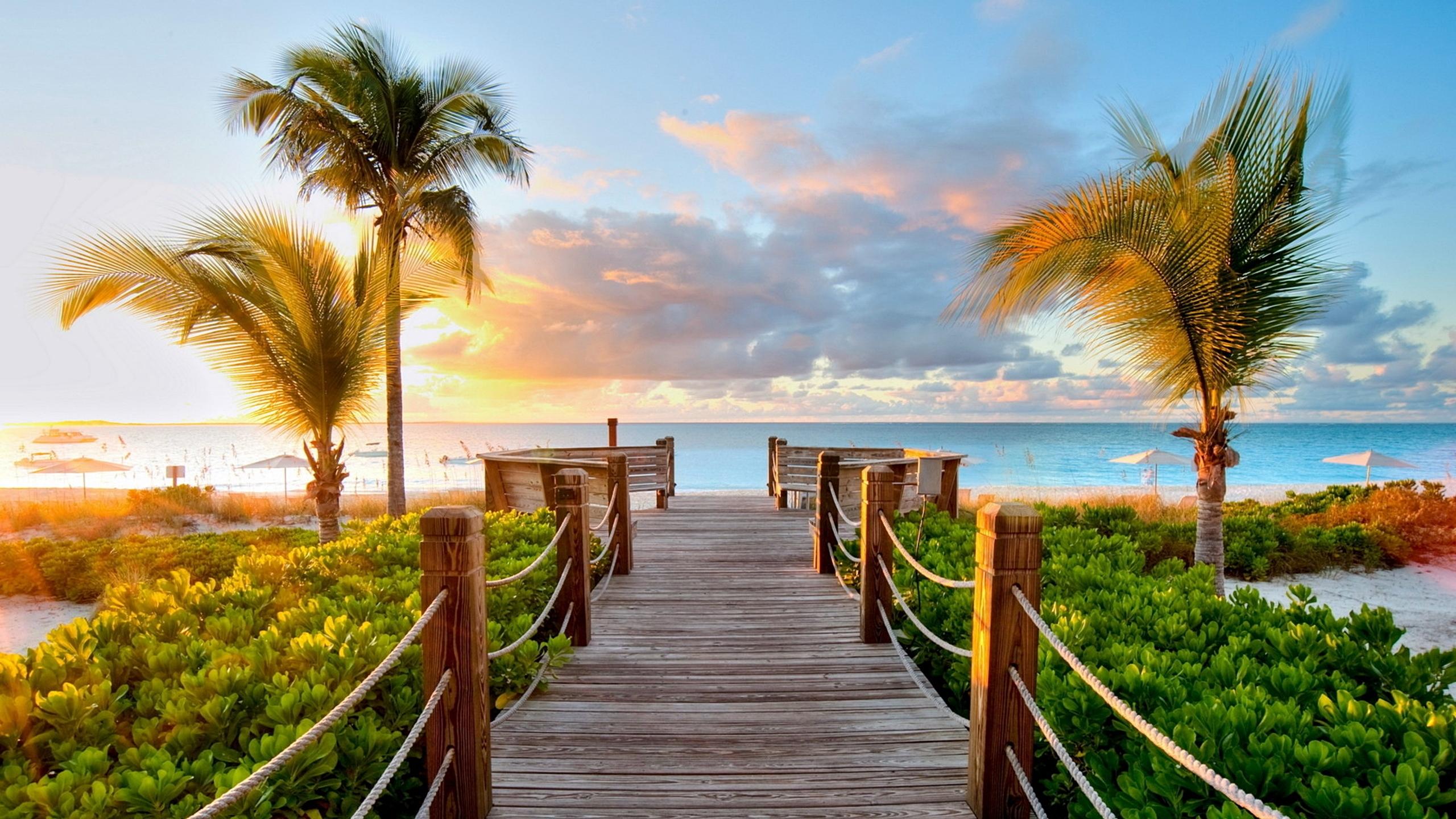 держится перед картинки на рабочий стол большие пляж селятся лесах