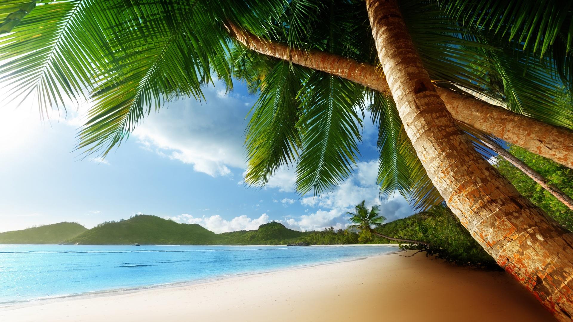 Открытка с пляжем, смешной