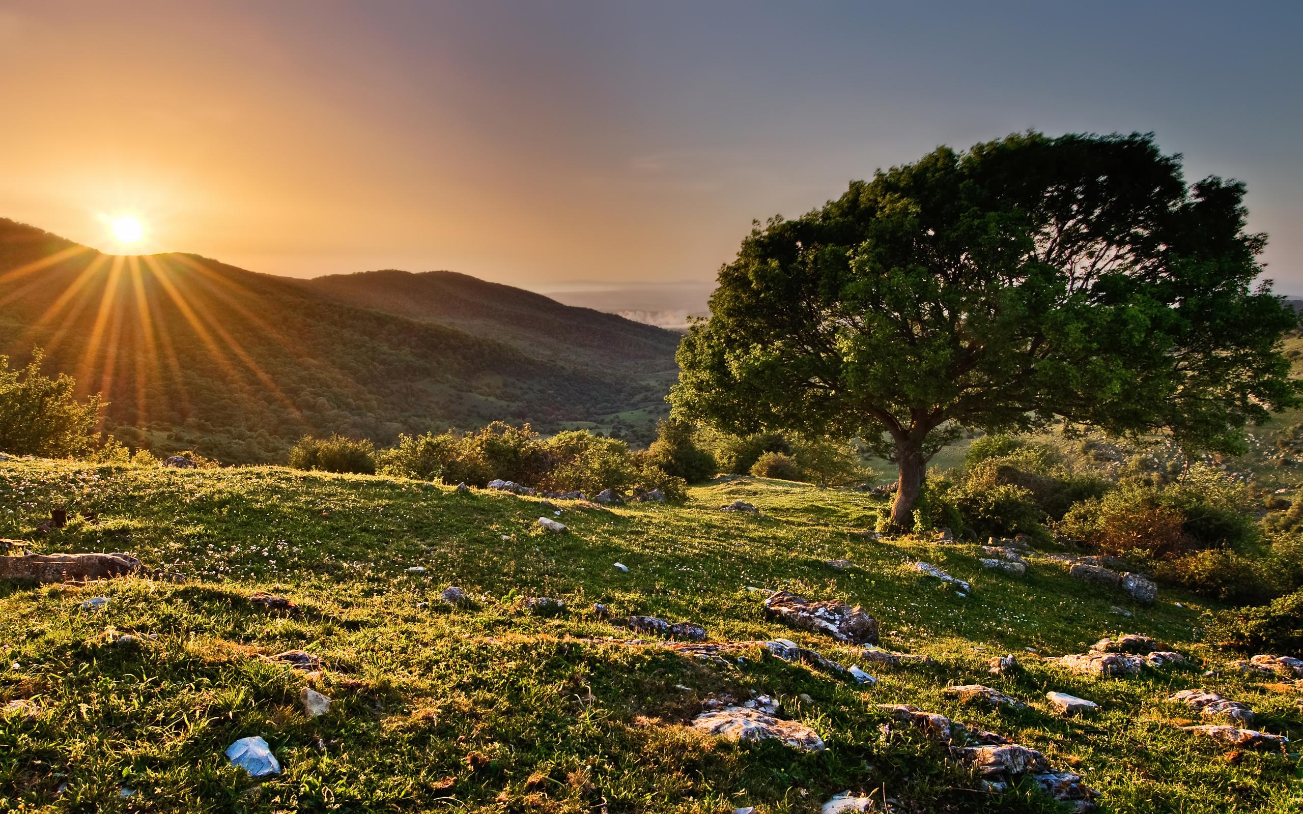 горы растительность лучи солнца бесплатно