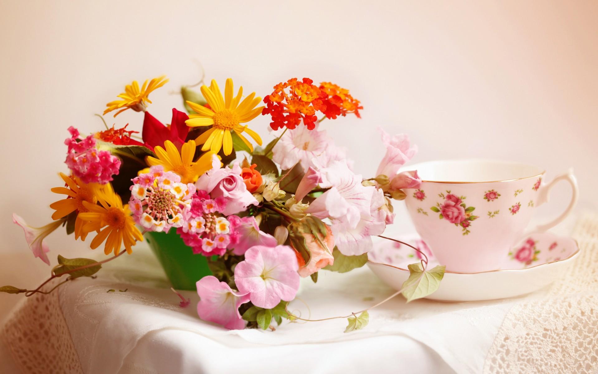природа цветы чашка  № 1486736  скачать