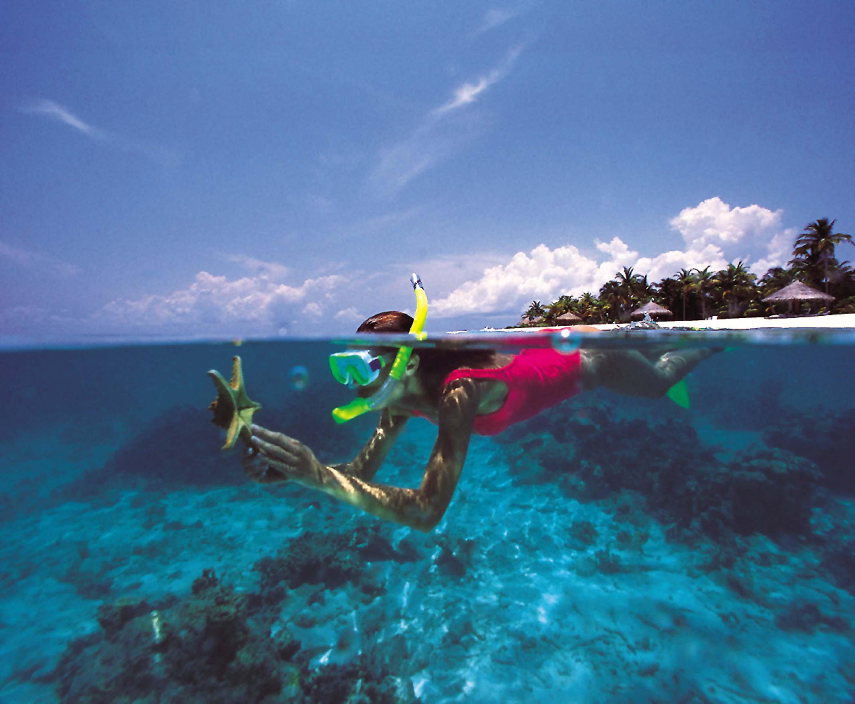4 Ways to Snorkel  wikiHow