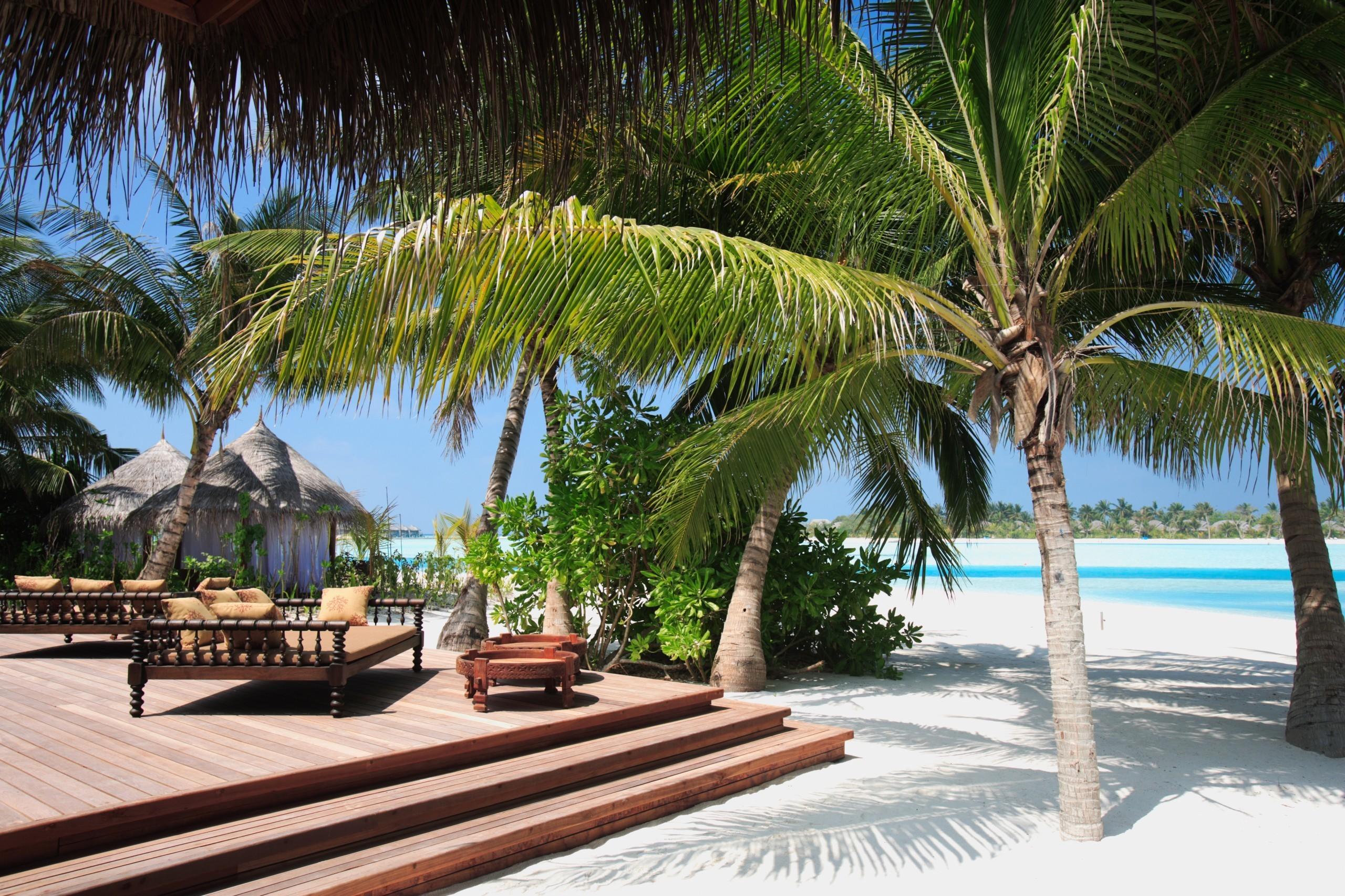 Отель апартаменты пальмы  № 3705571 бесплатно