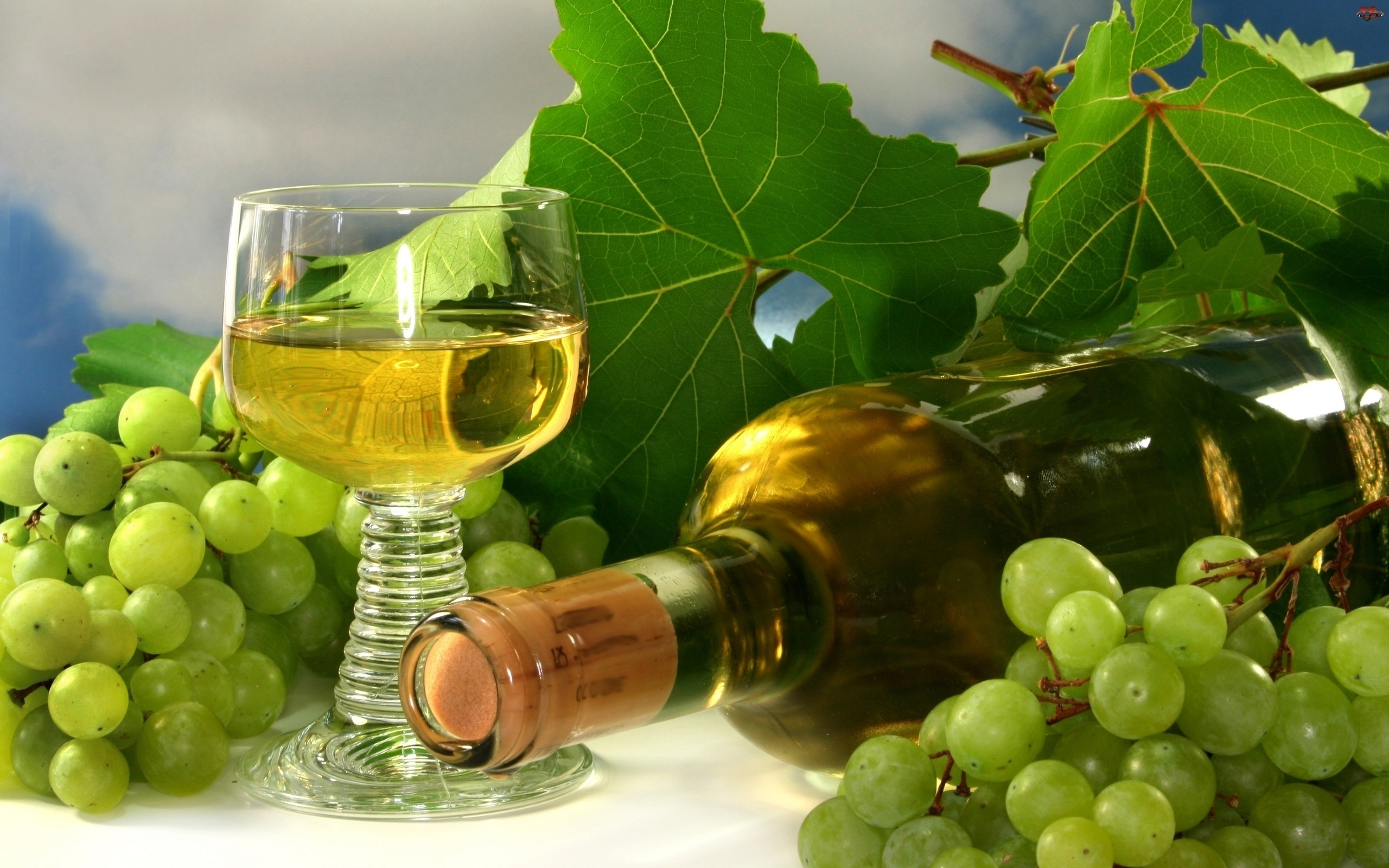 Обои для рабочего стола вино и виноград