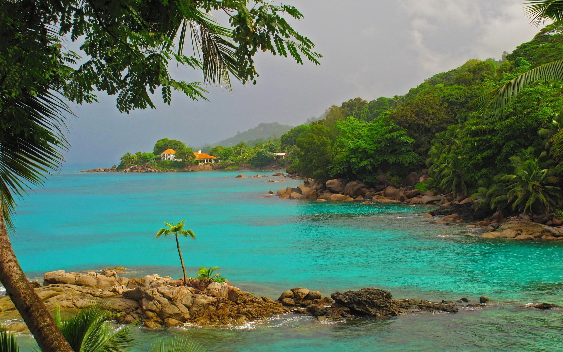 если фото тропических берегов дачники могут