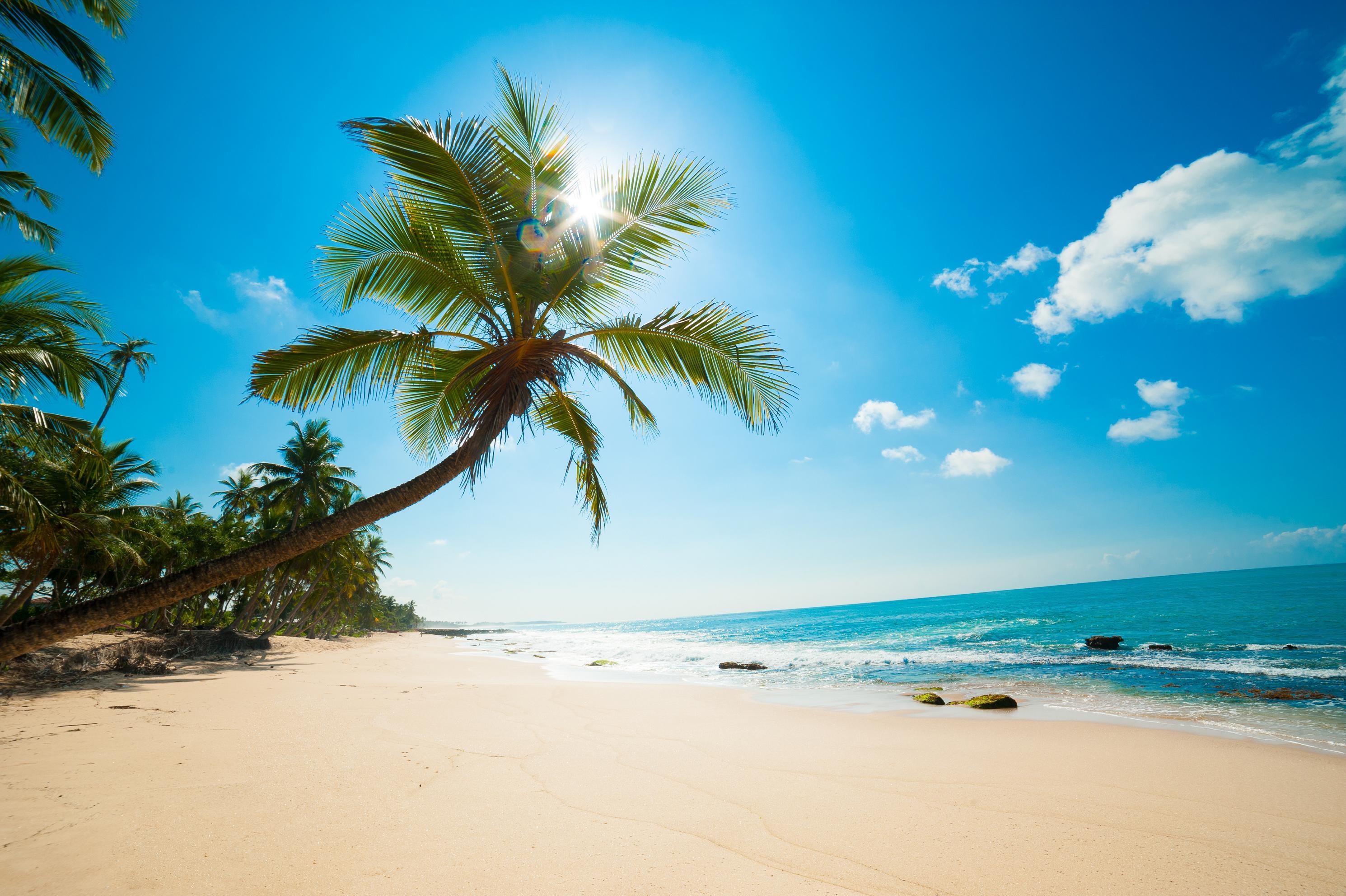 фотография это картинки пляж большое разрешение сразу