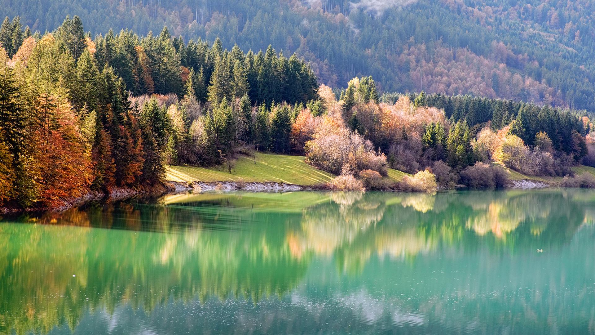 речка лес осень подборки
