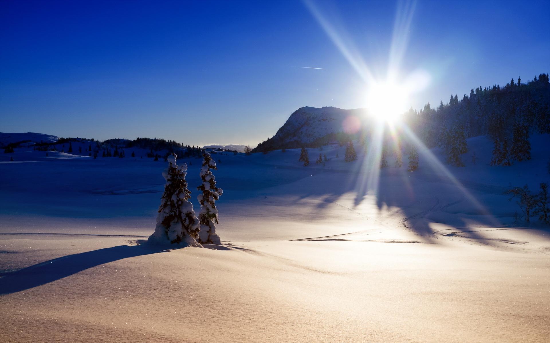Зимнее солнце фото картинки