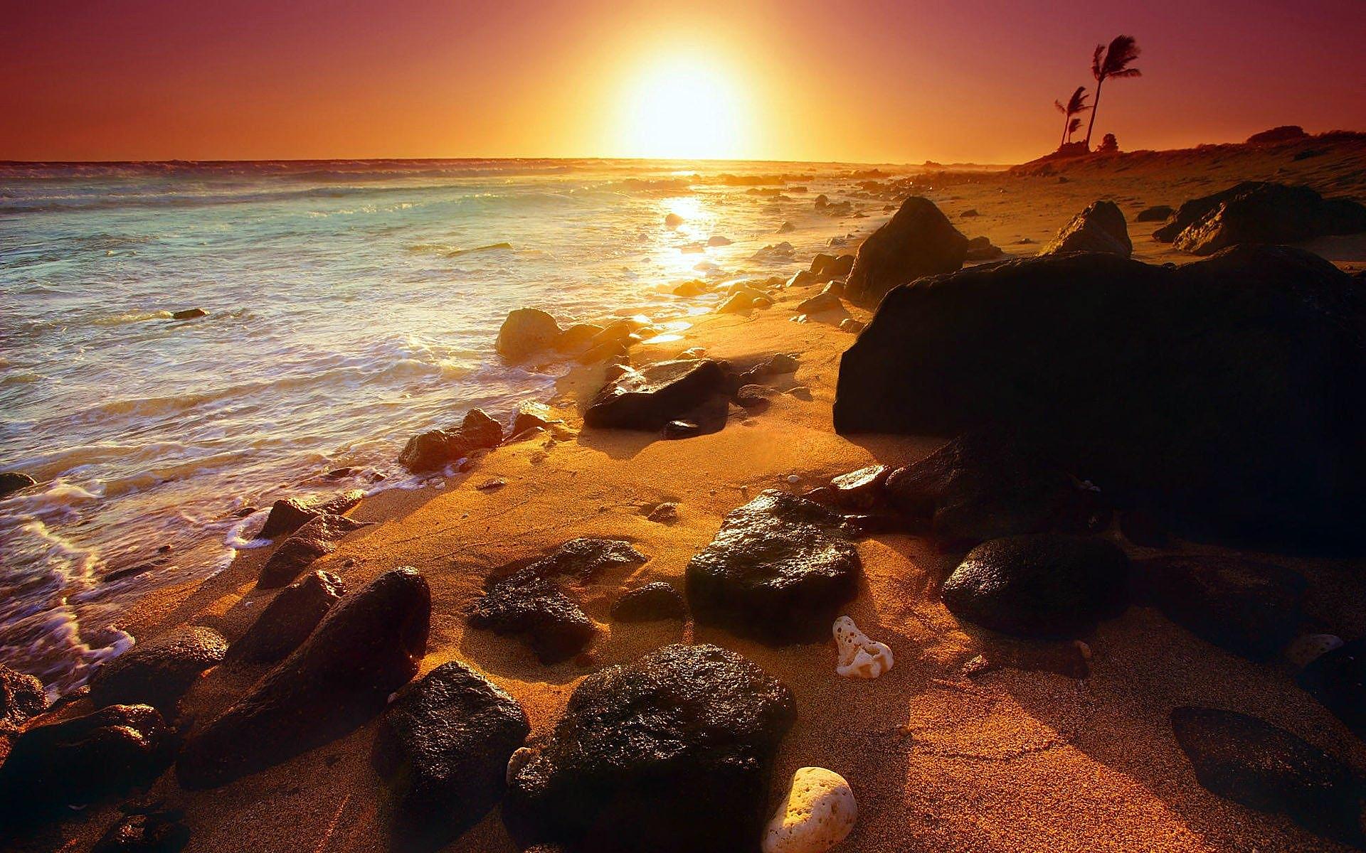 природа солнце море берег скачать