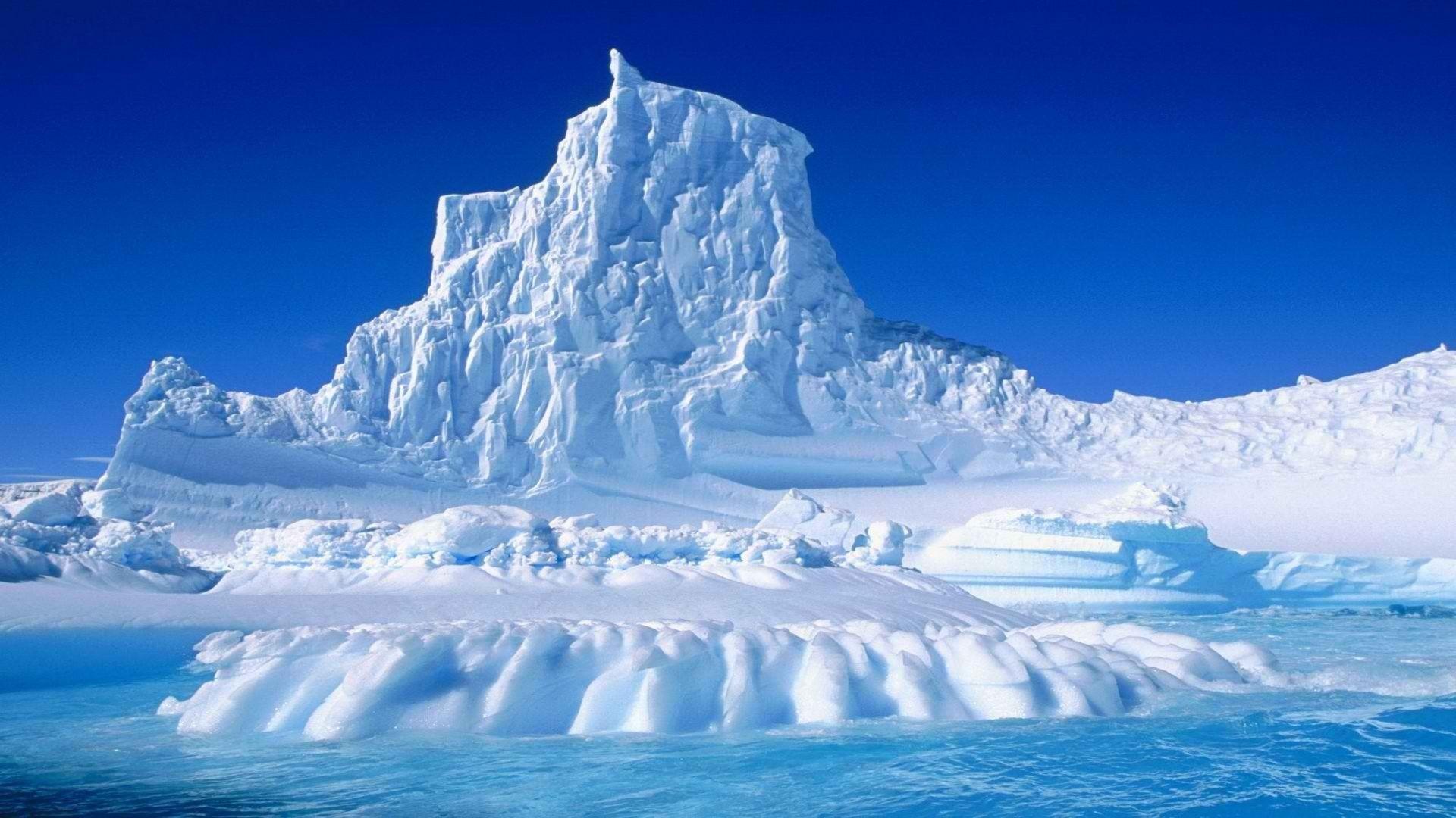 Днем рождения, антарктида картинки