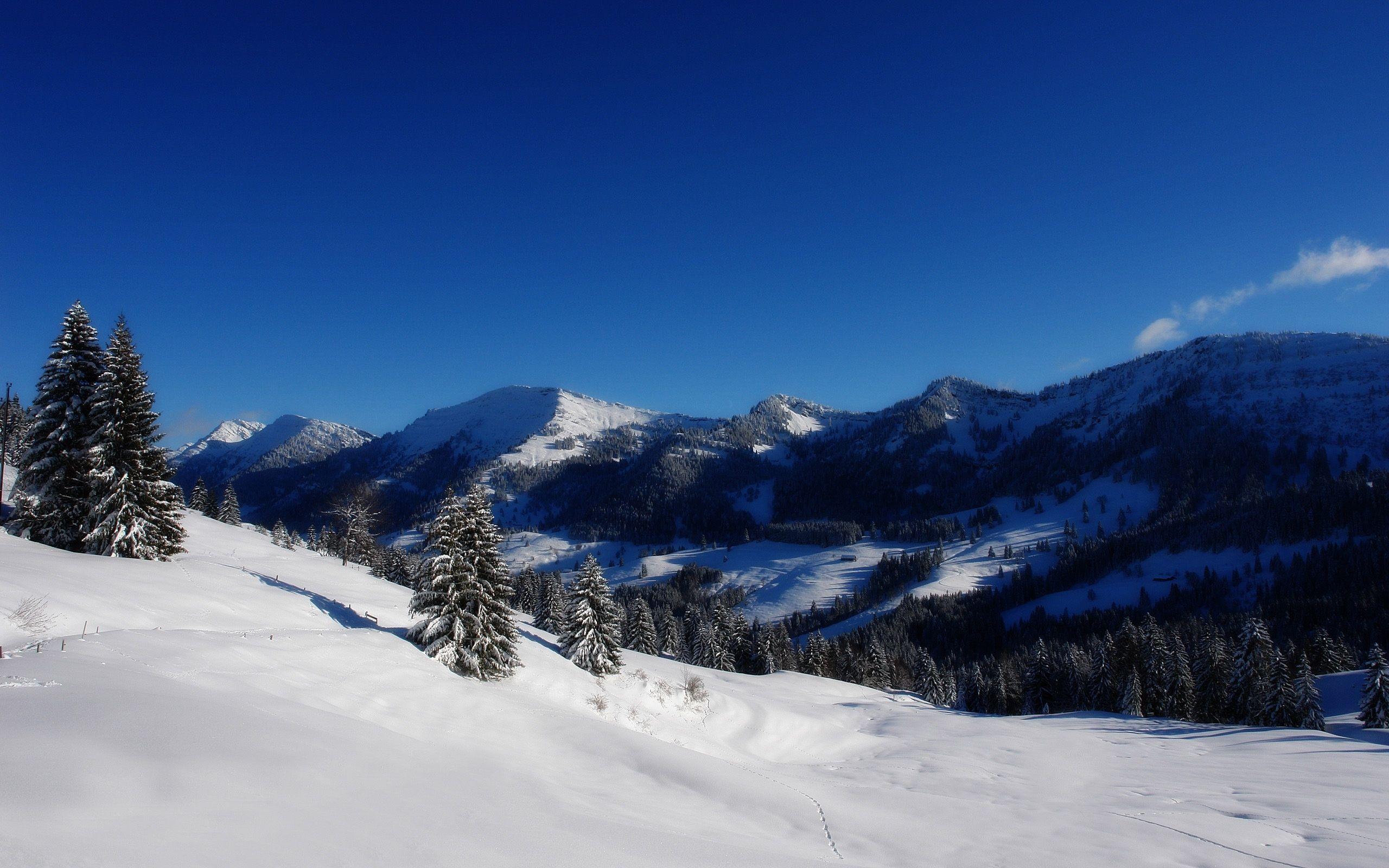Снег горы зима ели скачать