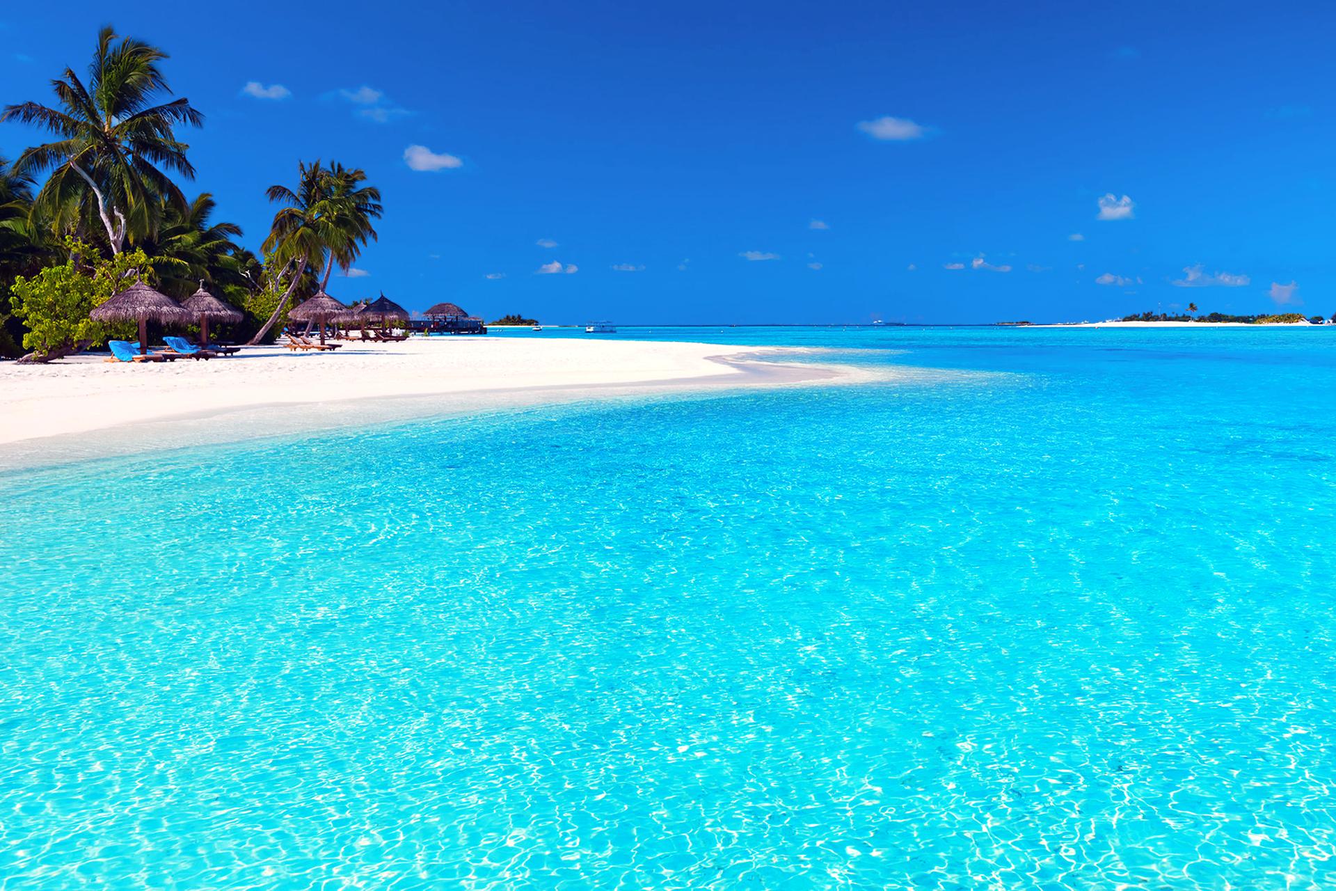 Vabbinfaru Island, Maldives  № 1471544  скачать