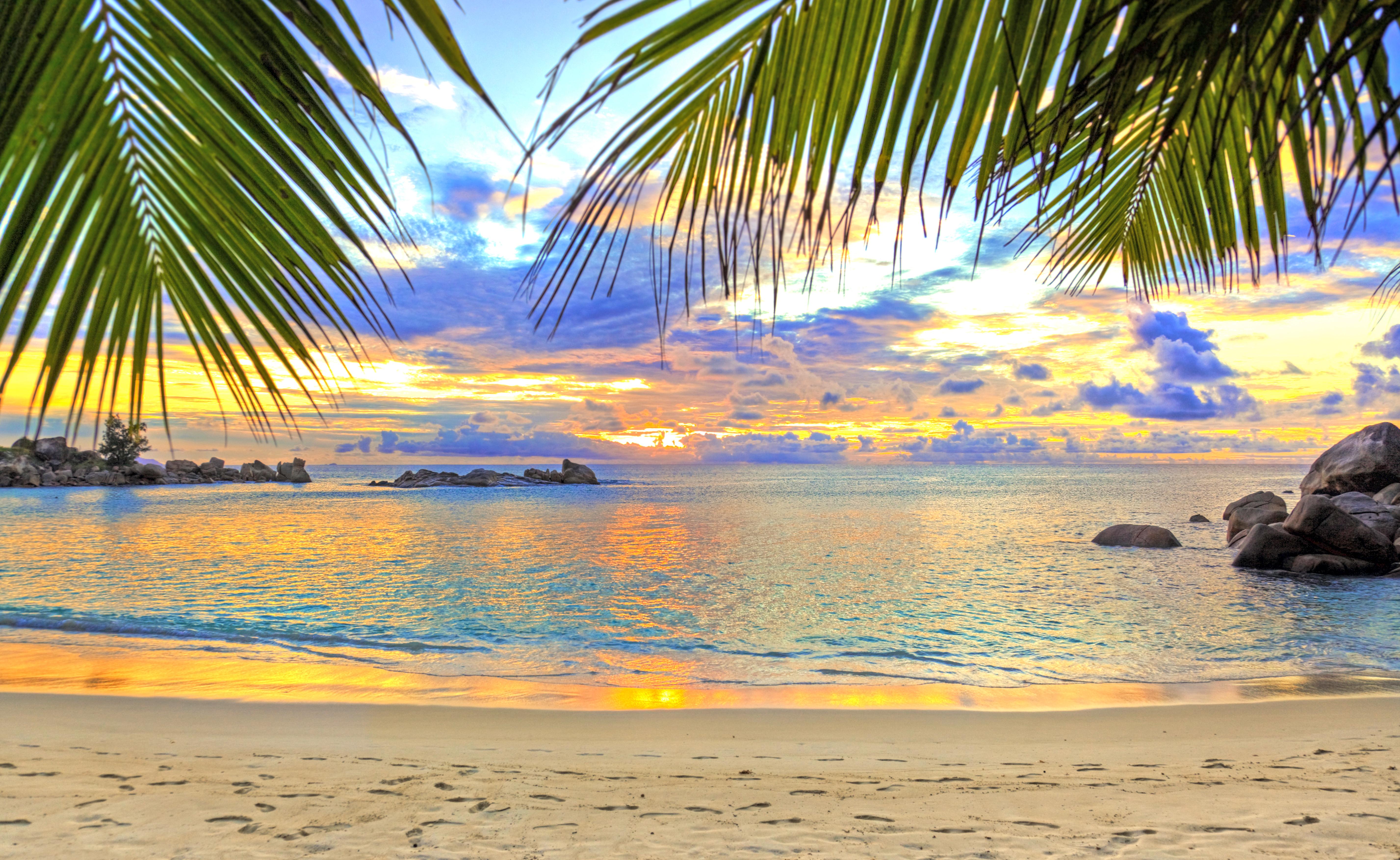 Море песок пляж пальмы  № 3898039  скачать