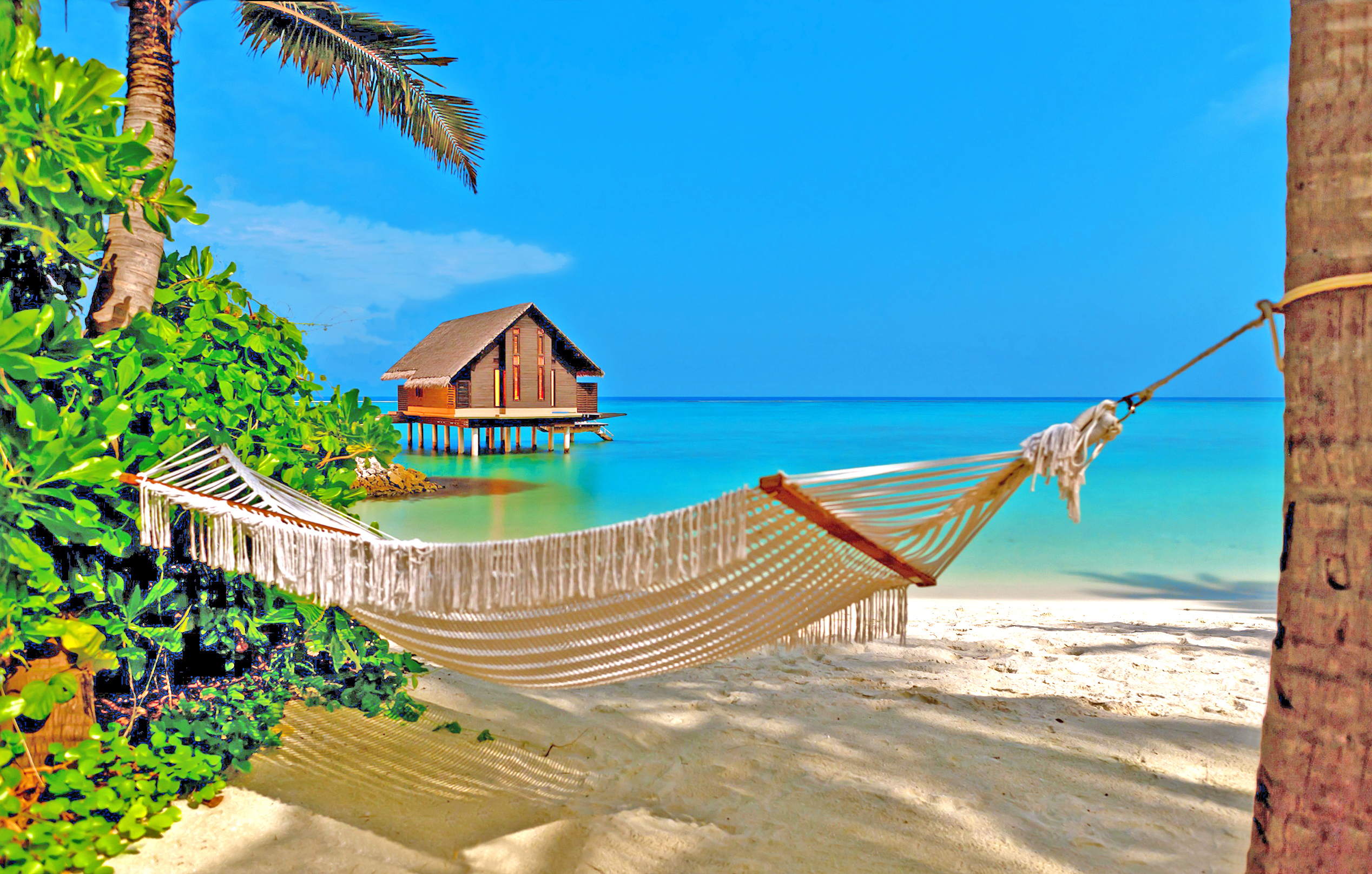 остров-арка картинки океан и гамак недолгое время брака