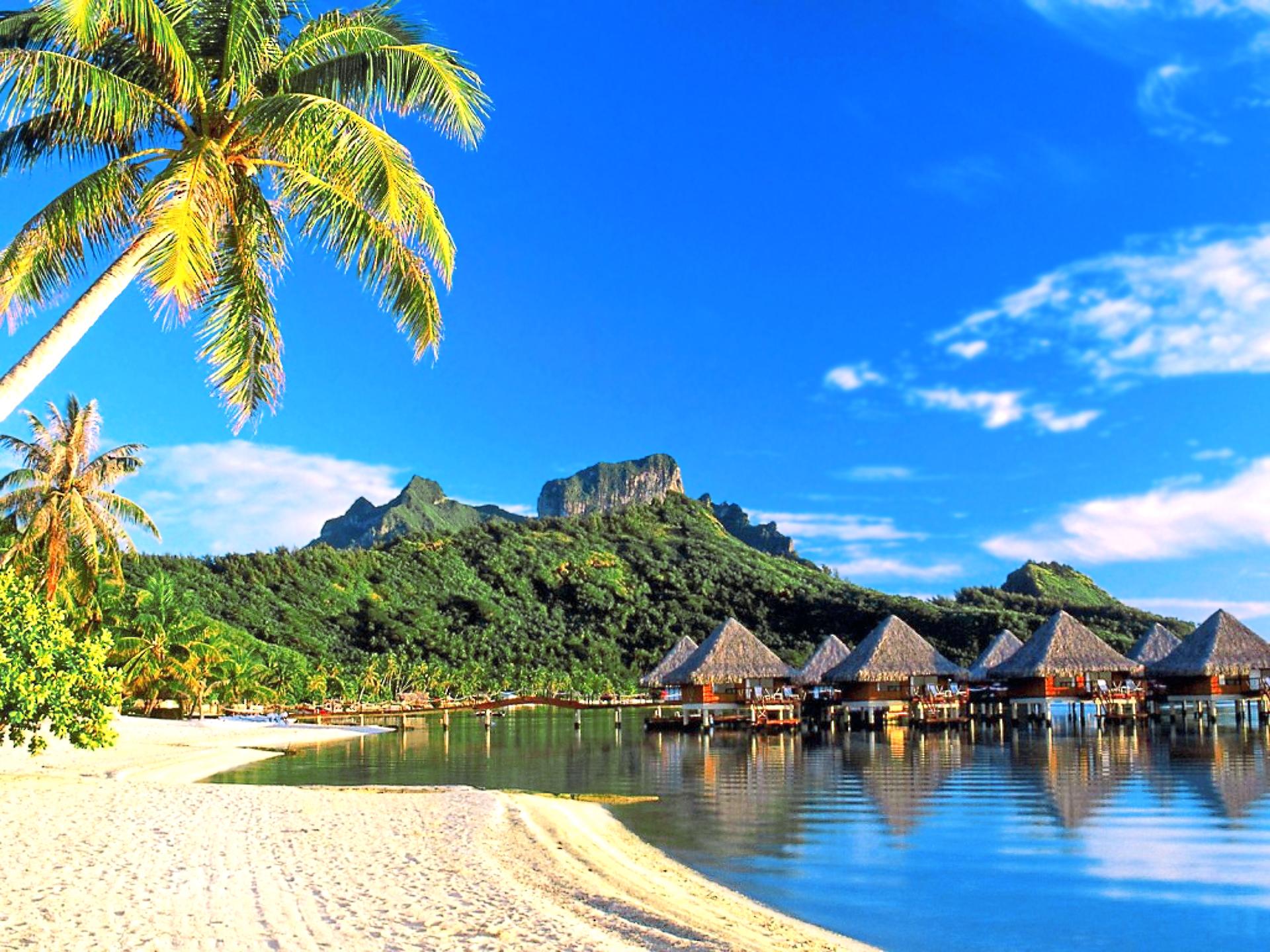открытость обои на рабочий стол пляж море пальмы бунгало смешного просто