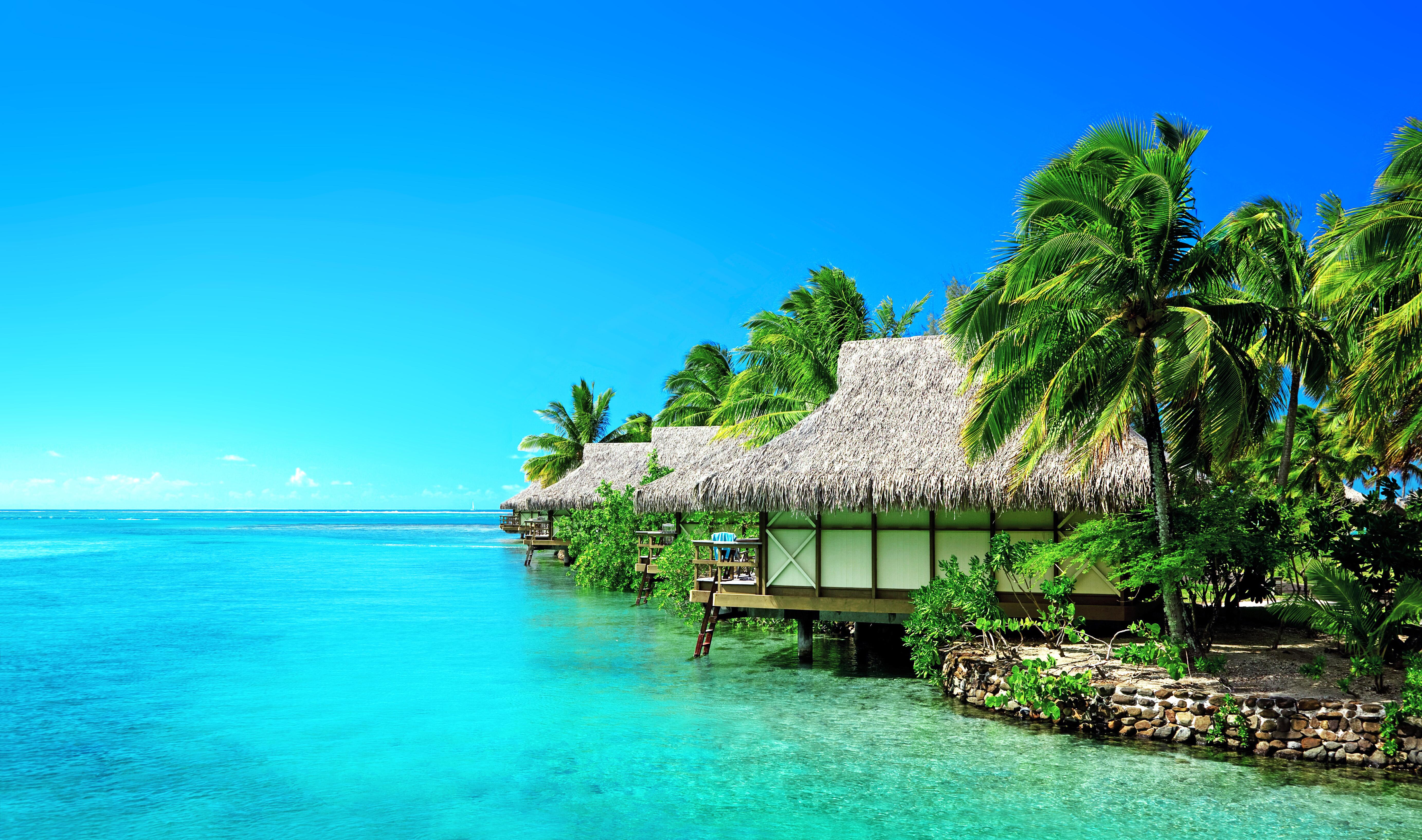 бунгало море пальмы бесплатно