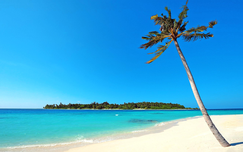 Райский берег  № 3245331  скачать