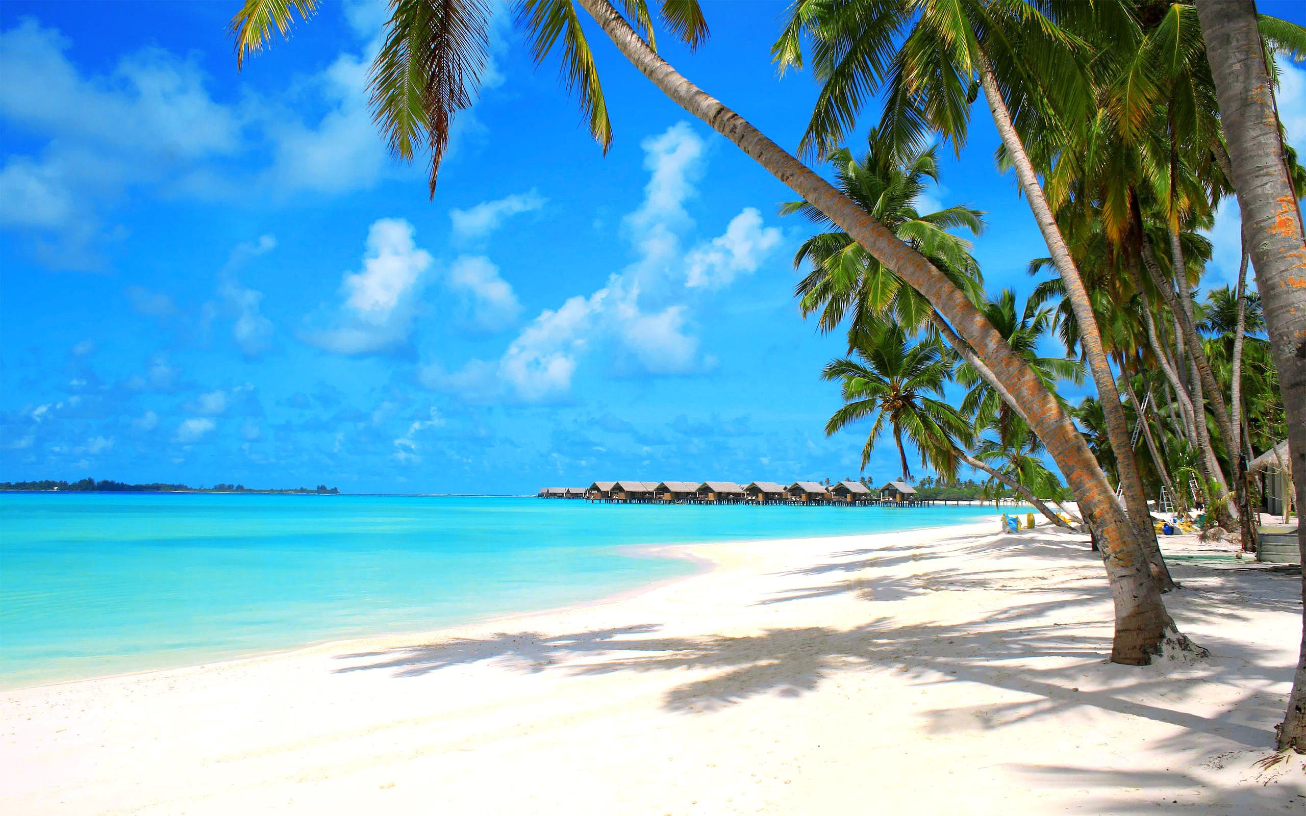 Vabbinfaru Island, Maldives  № 1471540 бесплатно
