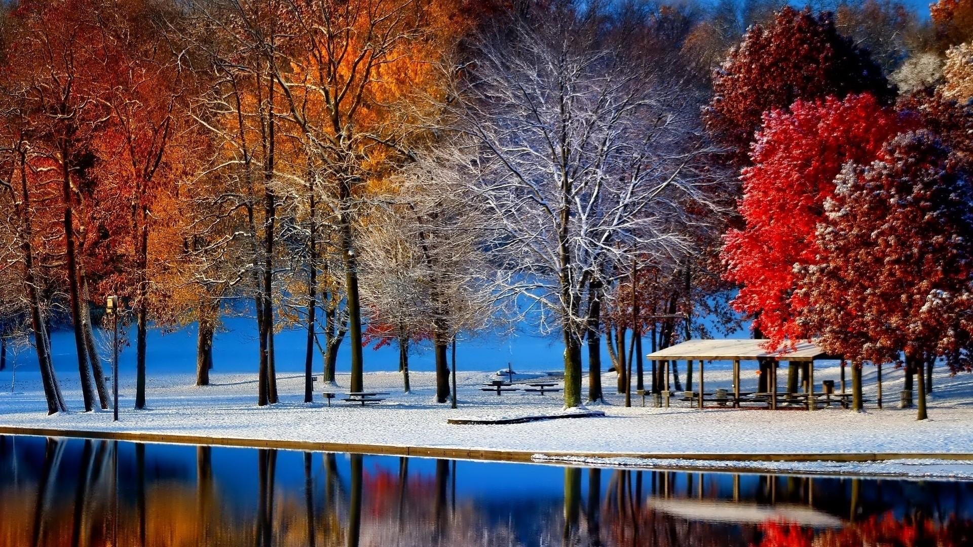 пейзаж осень в снегу магазинов России других