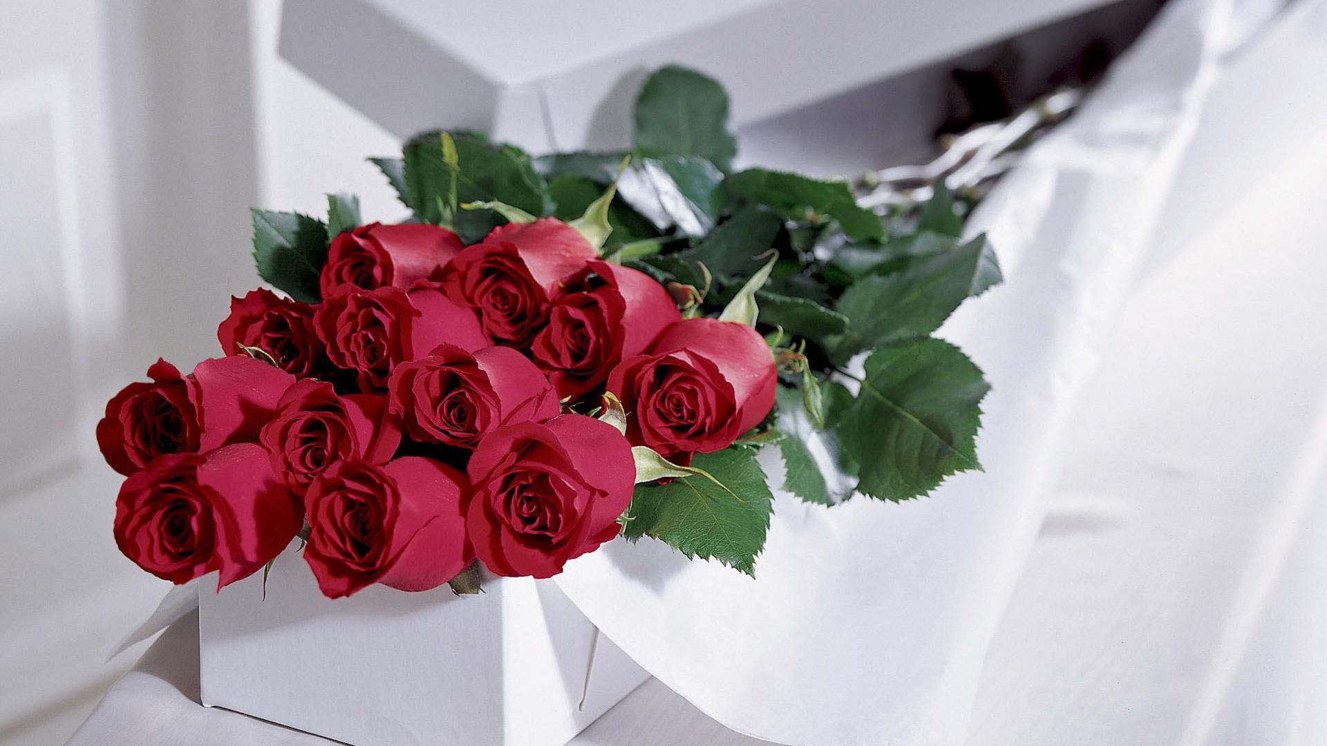 Картинки, поздравление розы открытка фото