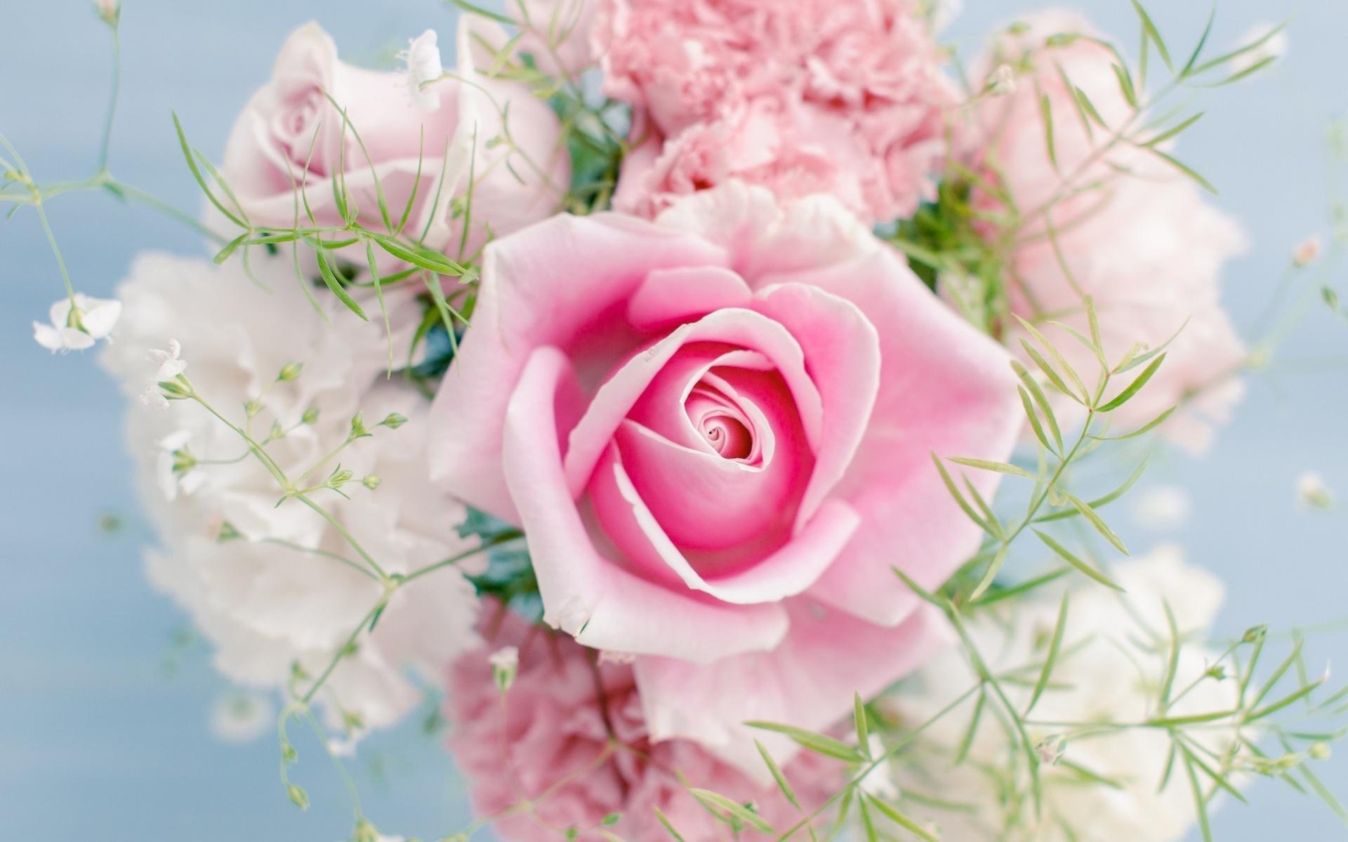 Открытки цветами обои