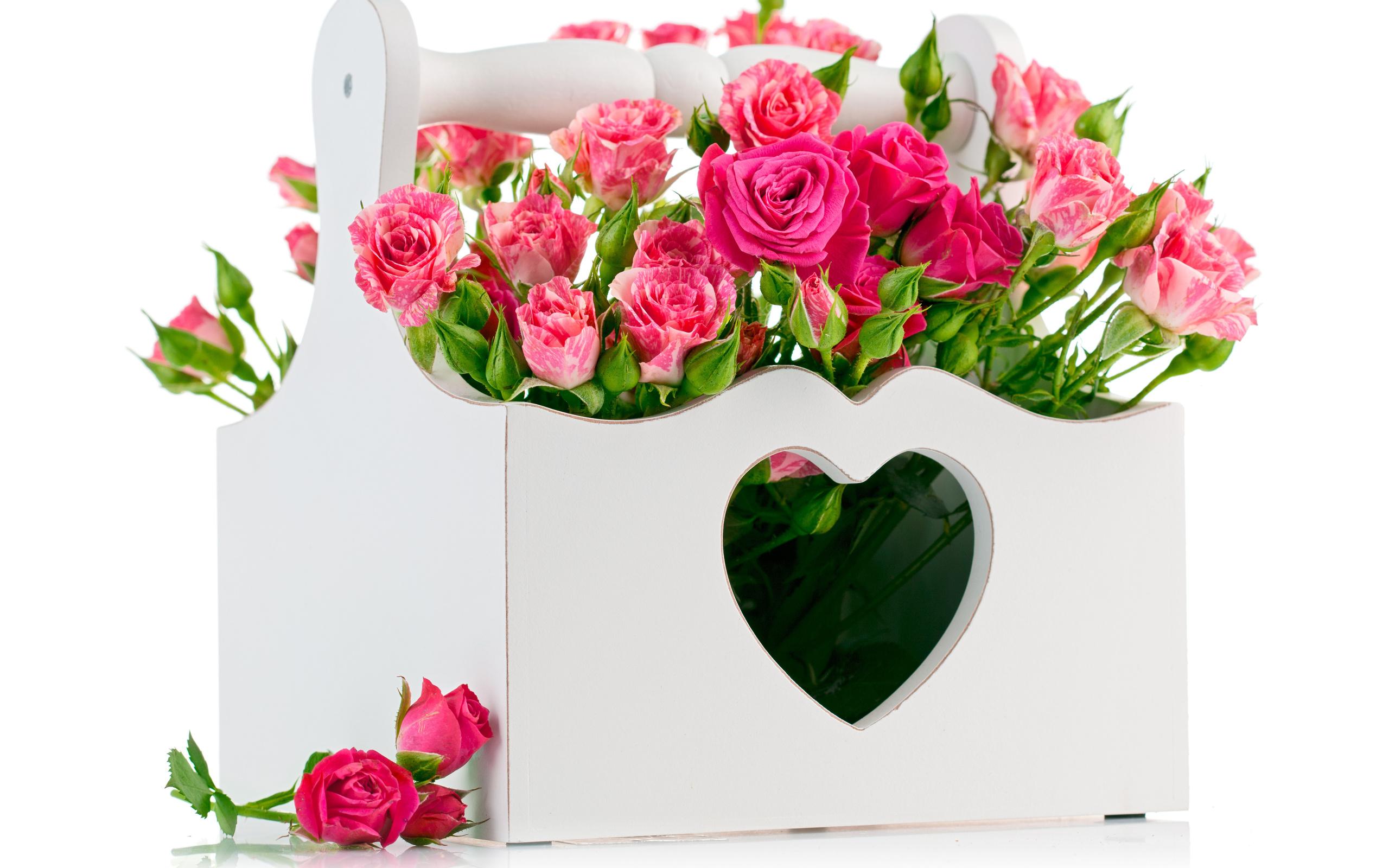 Для открыток, открытки с кодами цветы