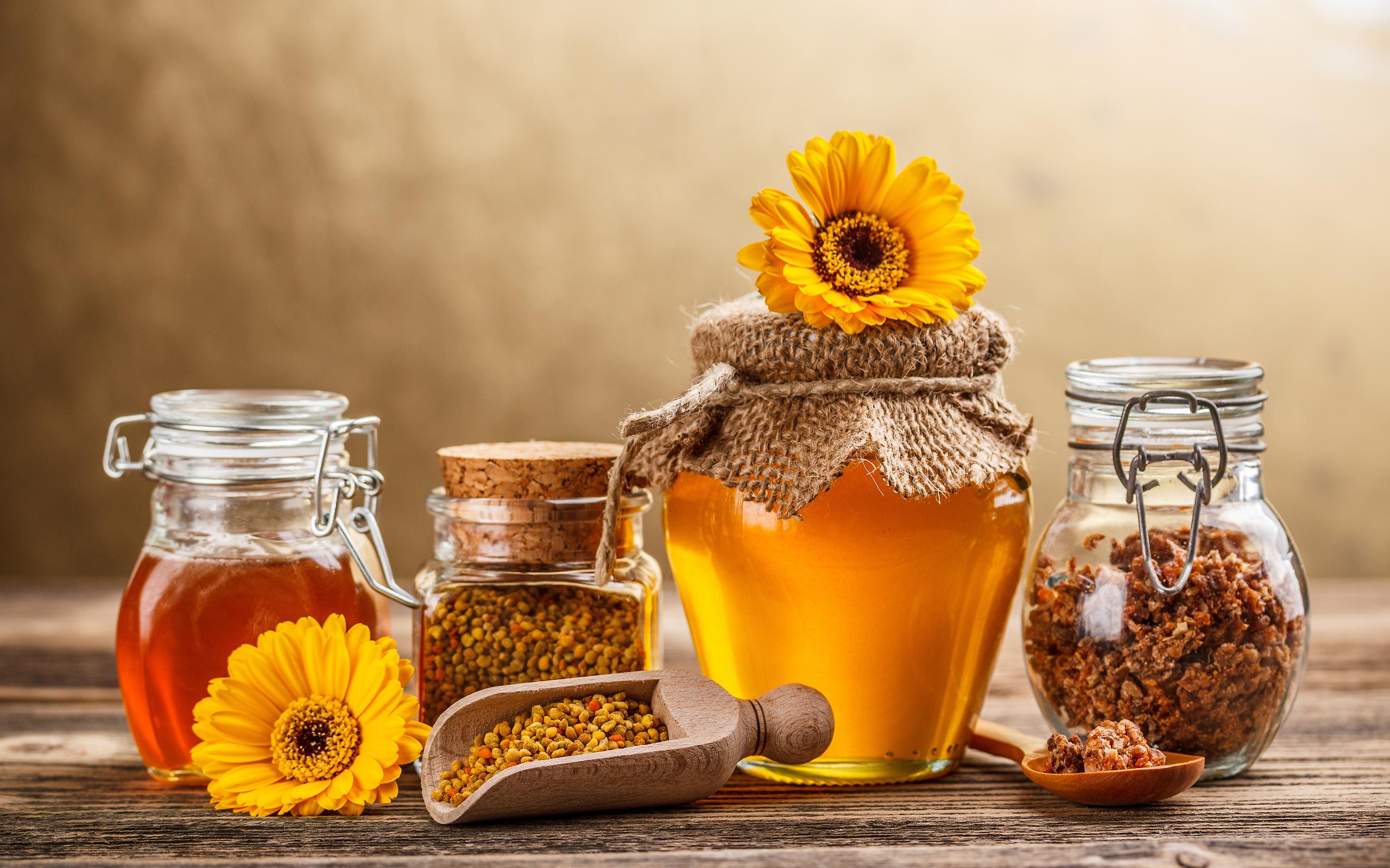 Мёд тосты бесплатно