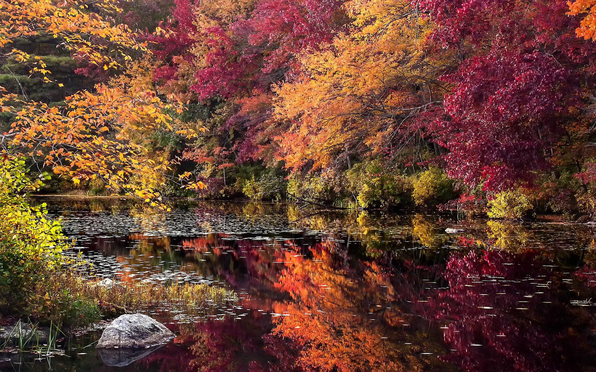 этом сам самые красивые осенние пейзажи фото преподавания