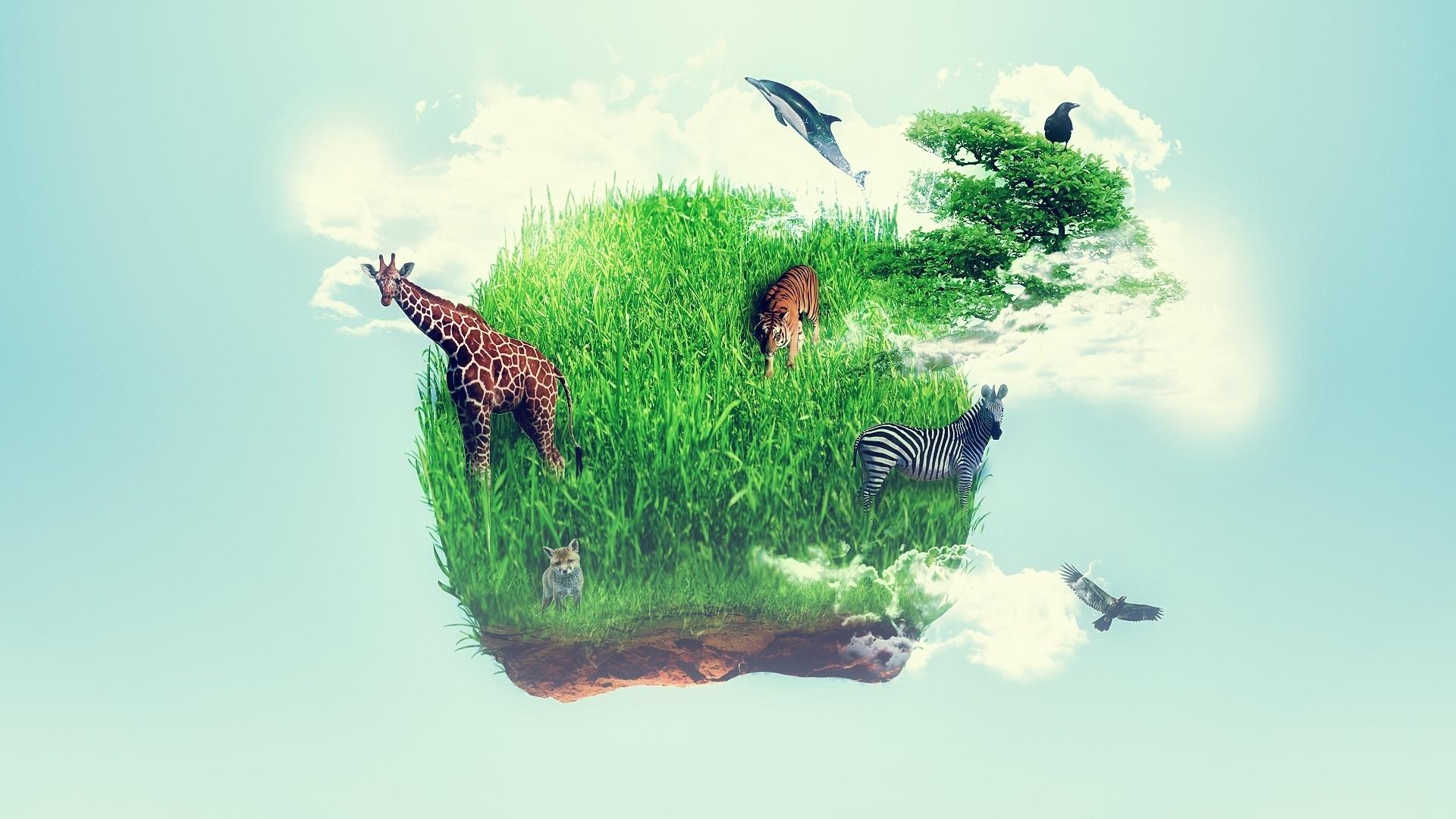 том, картинки где планета защищает животных что