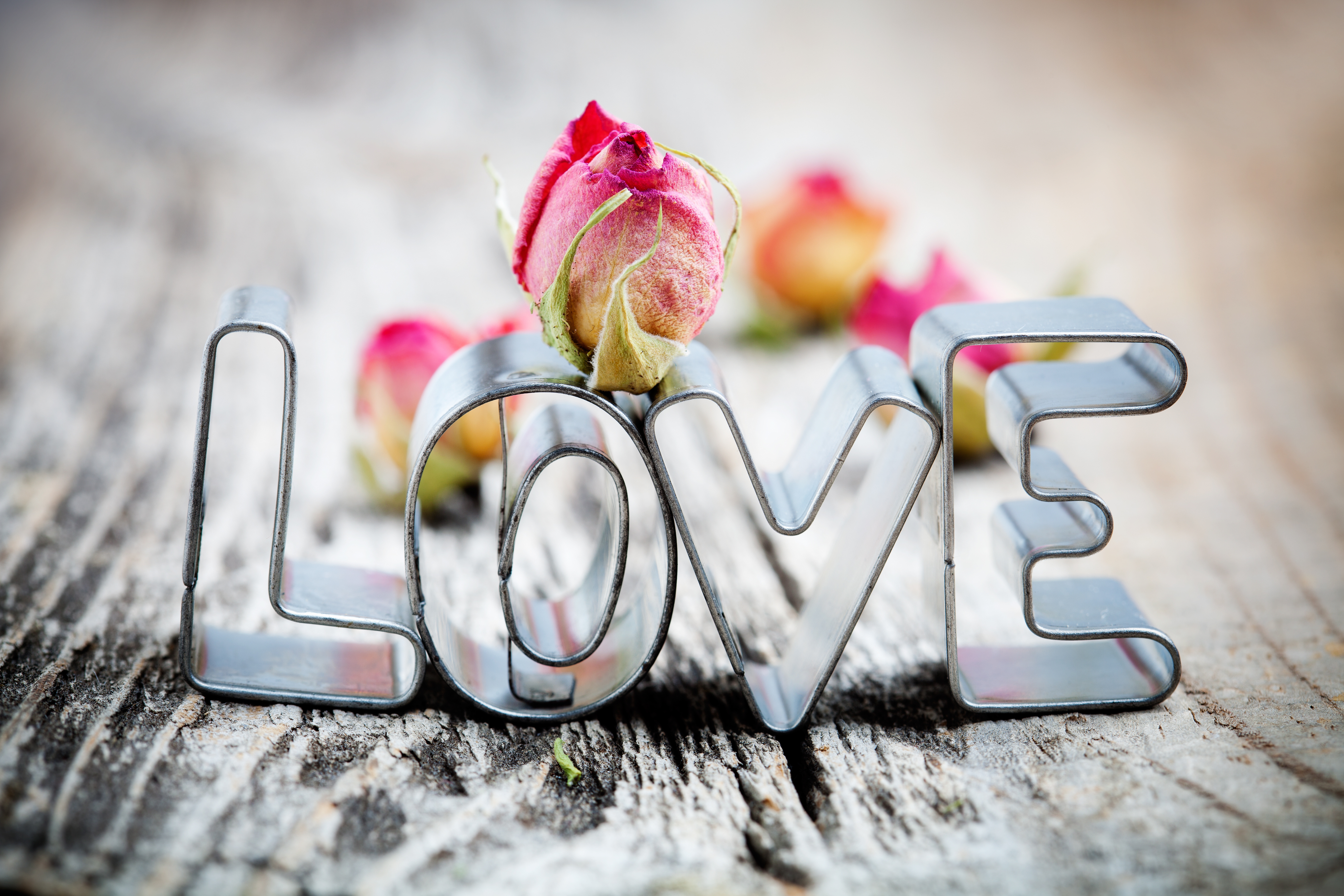 обои на рабочий стол про любовь на весь экран бесплатно № 24037  скачать