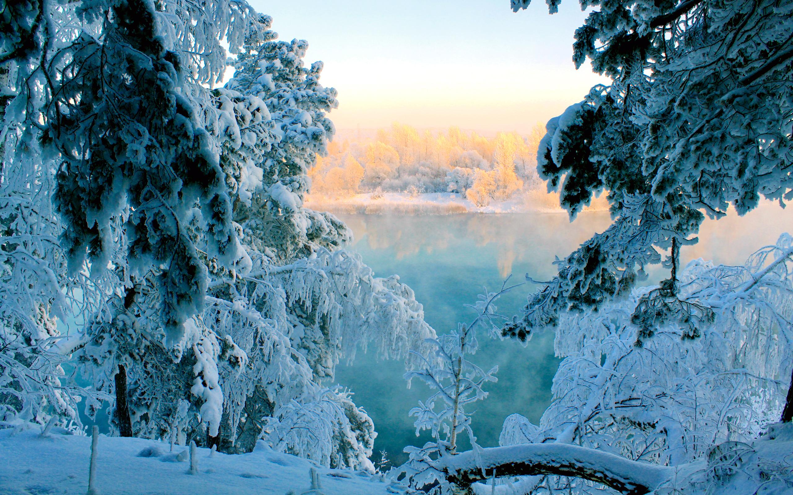 обои зима на рабочий стол пейзаж № 640770  скачать