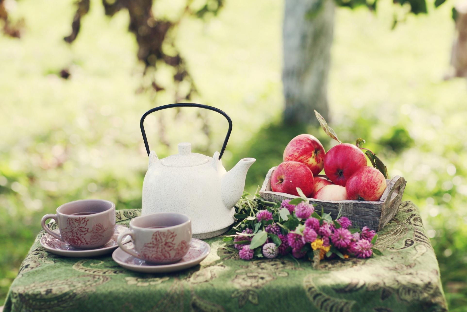 еда чай конфеты яблоки food tea candy apples  № 325917 загрузить