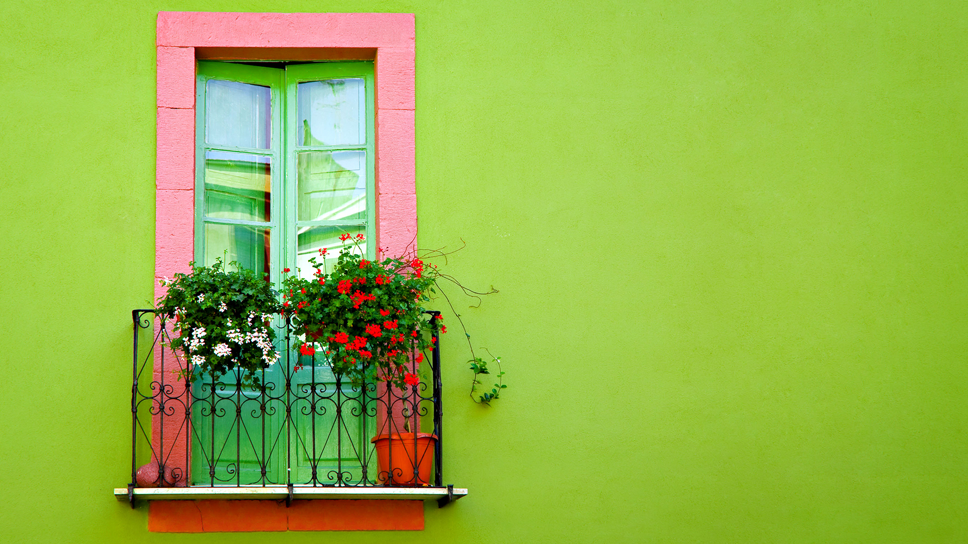 Красивый фон для фотографий дома