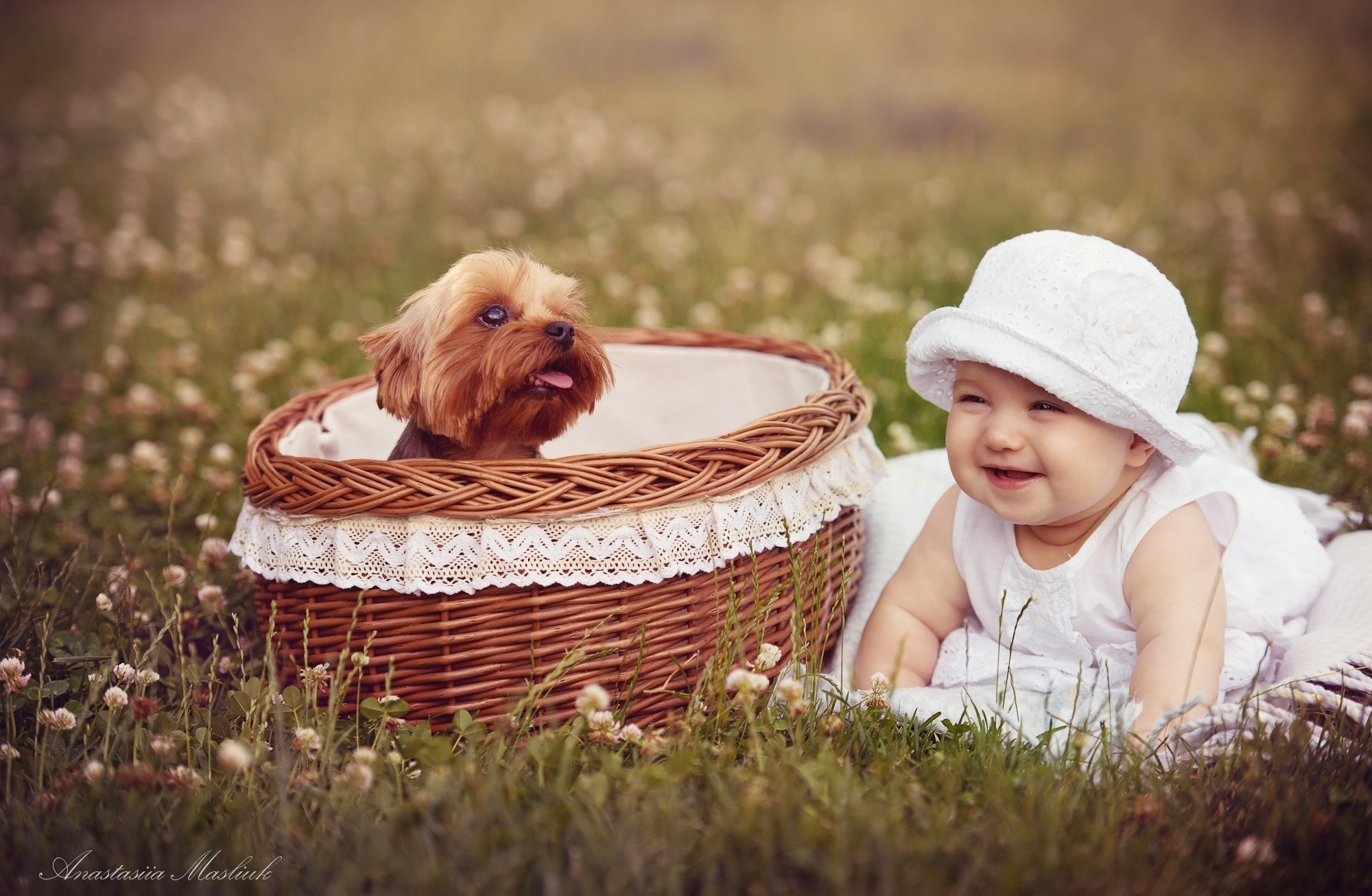 природа животные собака девочка жизнь nature animals dog girl life  № 3951018 загрузить
