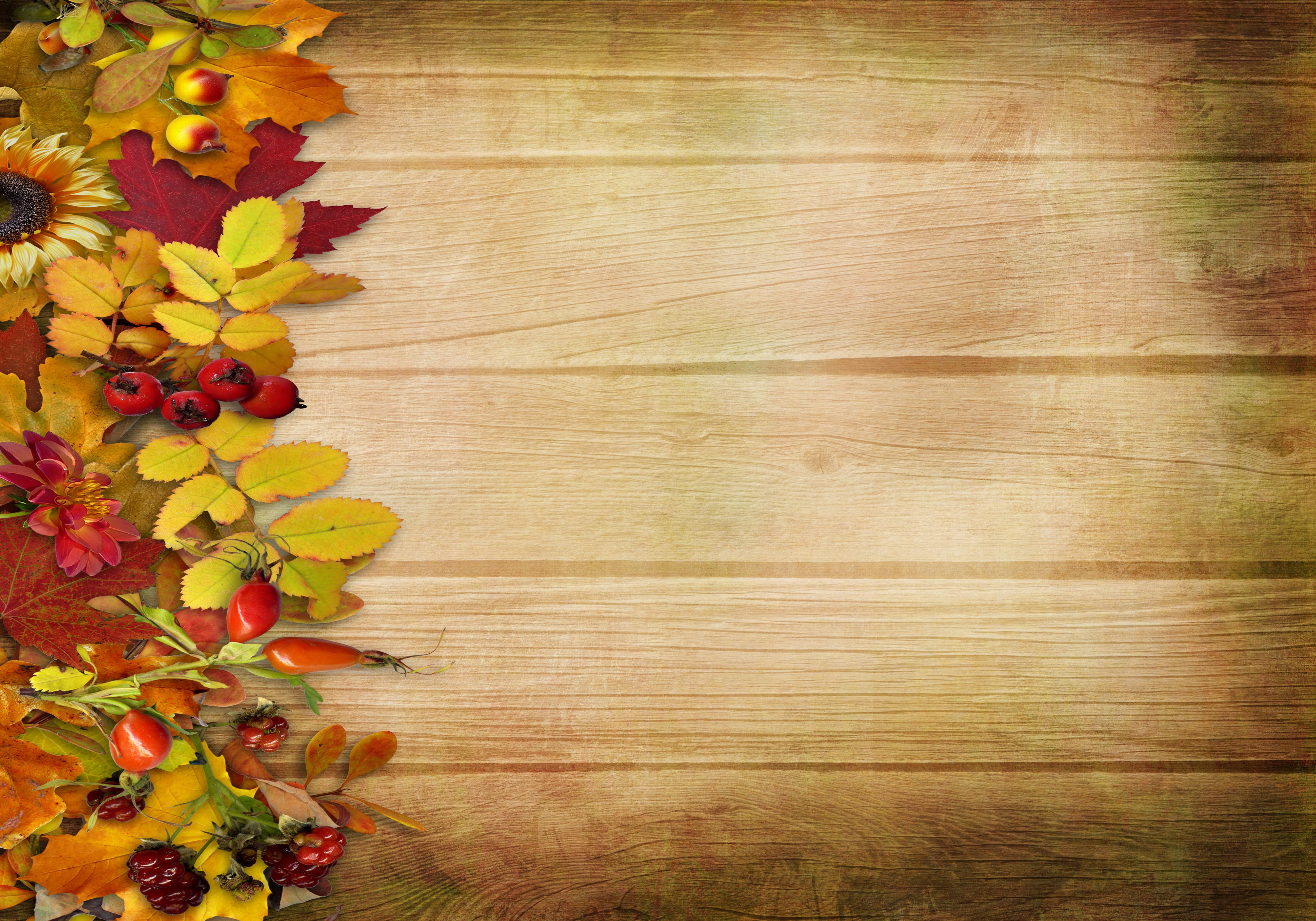Листья на досках бесплатно