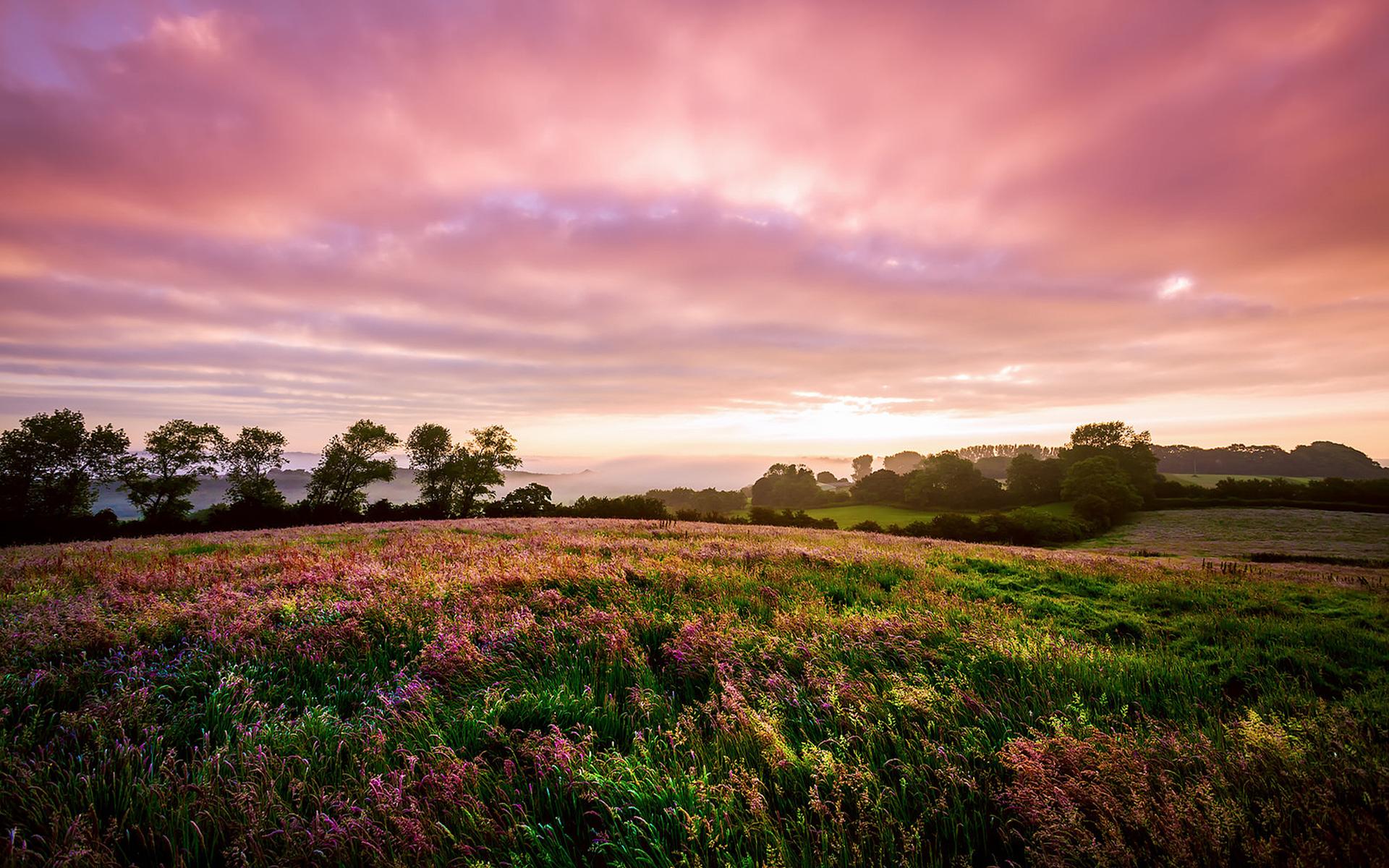 него сверху фото красивые пейзажи луга и поля чаще всего выбирают