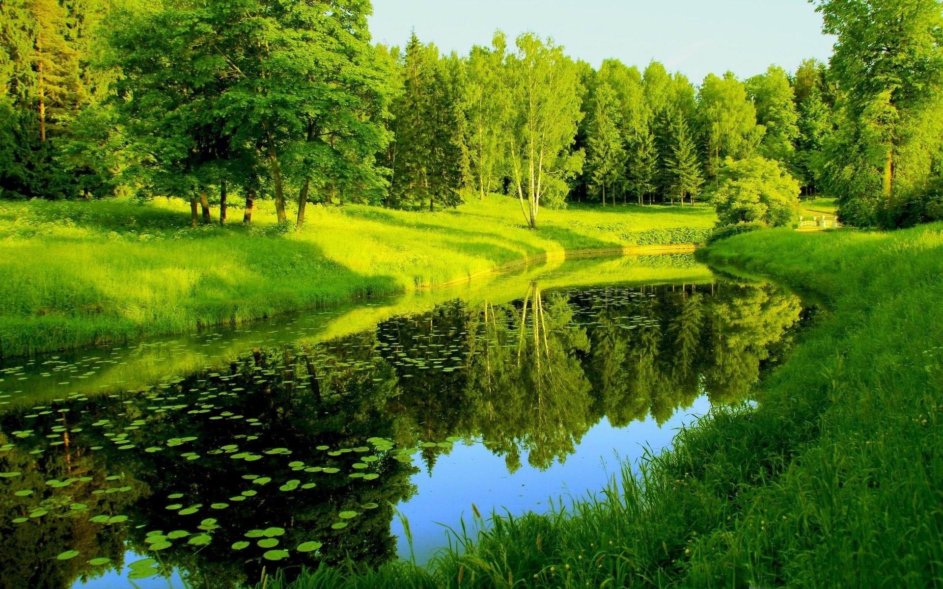 Картинки с речкой природа