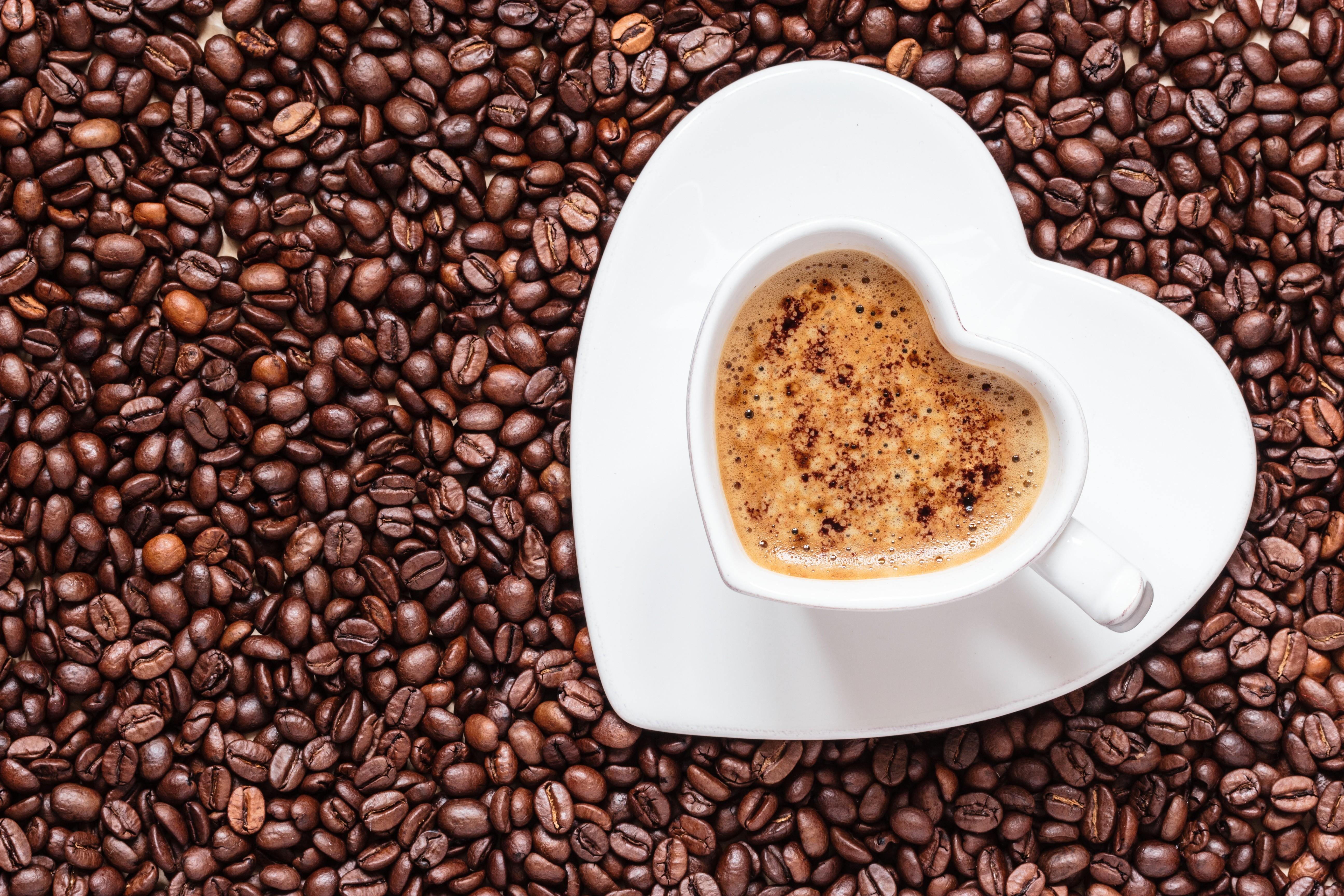 кофе зерна чашка coffee grain Cup загрузить