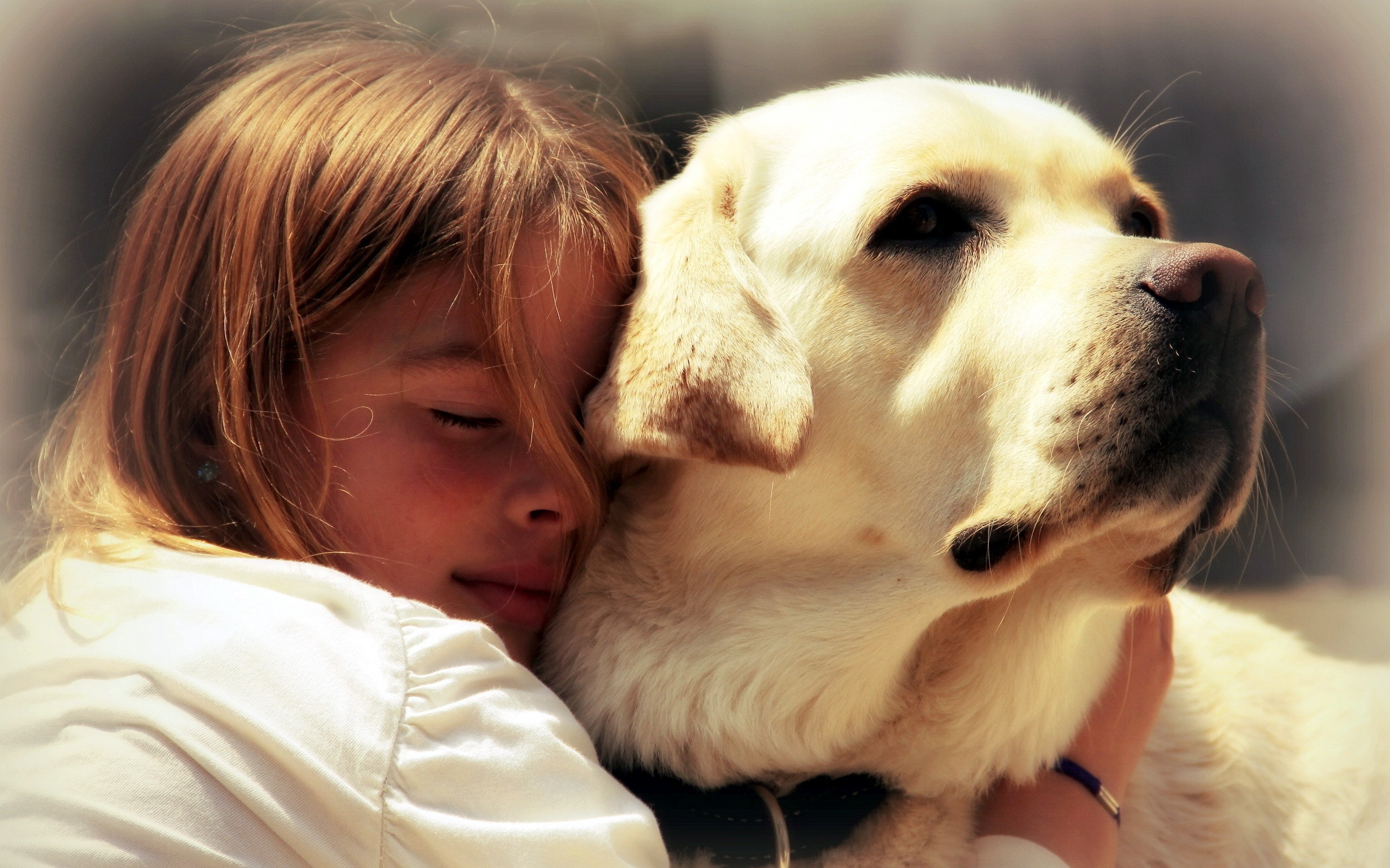 Собака ребенок  № 2980123 без смс